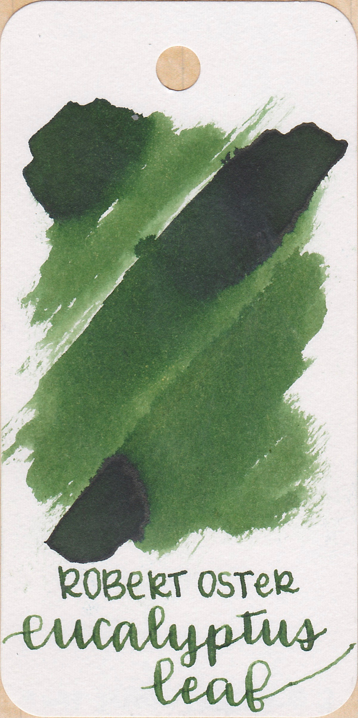 The color... - Eucalyptus Leaf is a medium green. It has a tiny bit of black sheen when really concentrated, and has medium shading.Seasonally, I would use it in the spring.