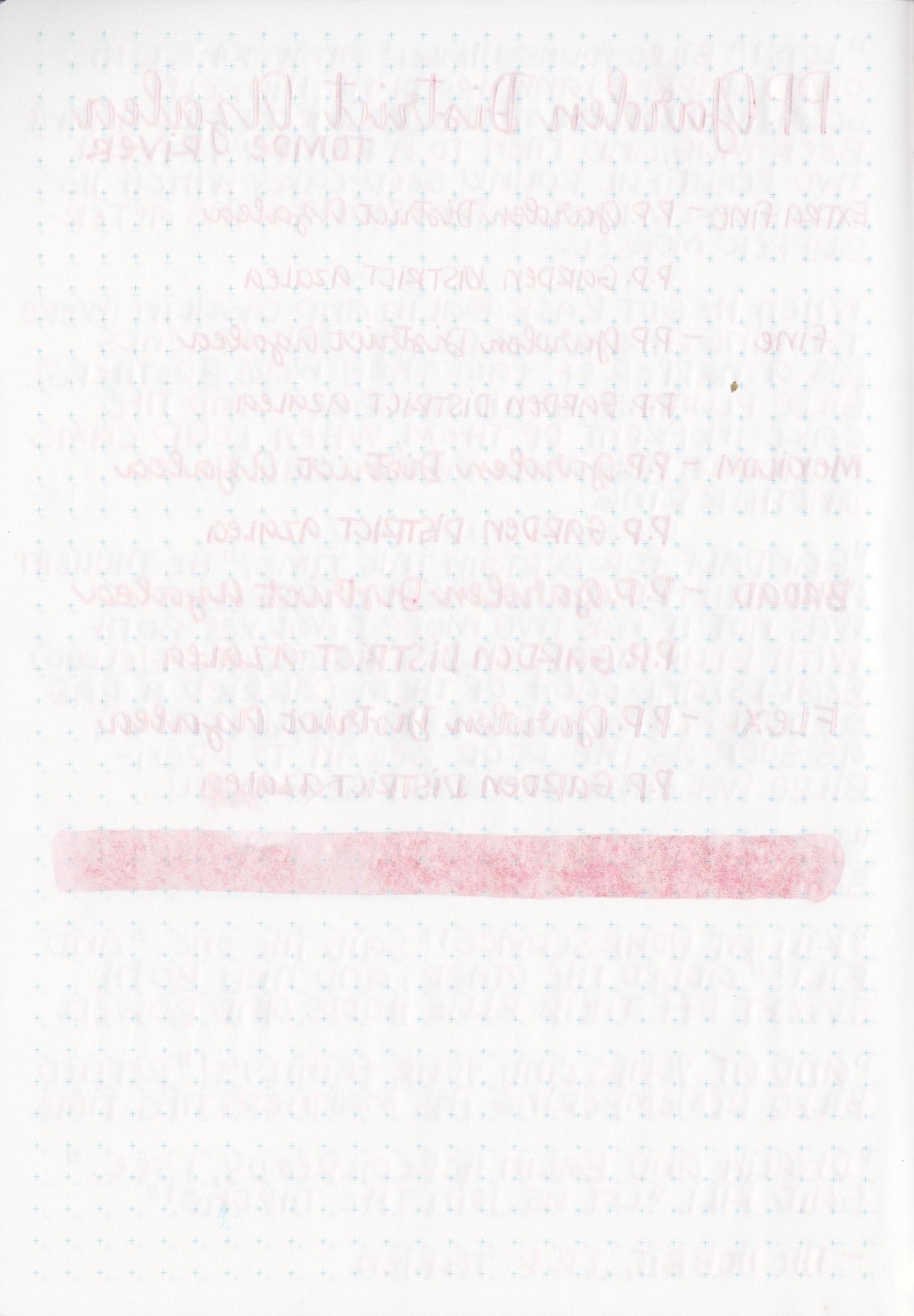 PPGardenDistrictAzalea - 12.jpg