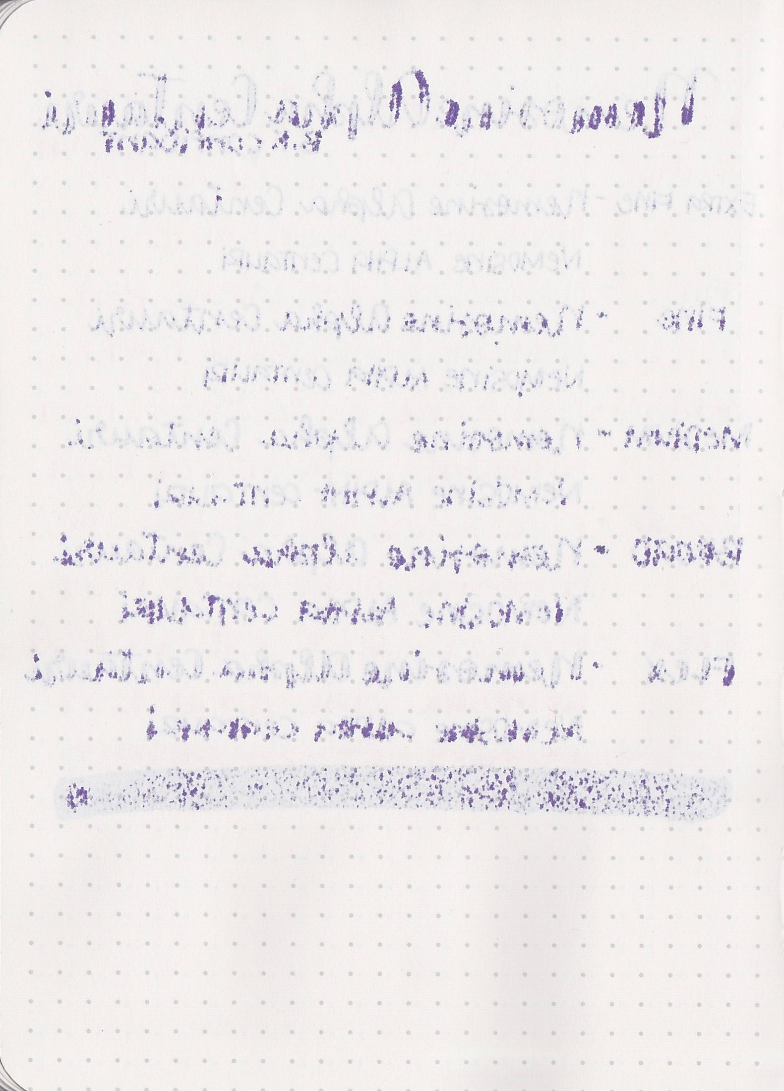 NemoAlphaCentauri - 15.jpg