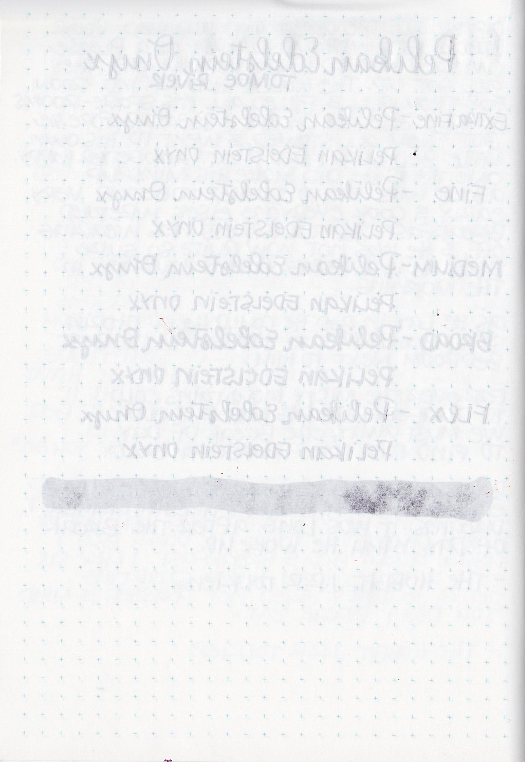PEOnyx - 6.jpg