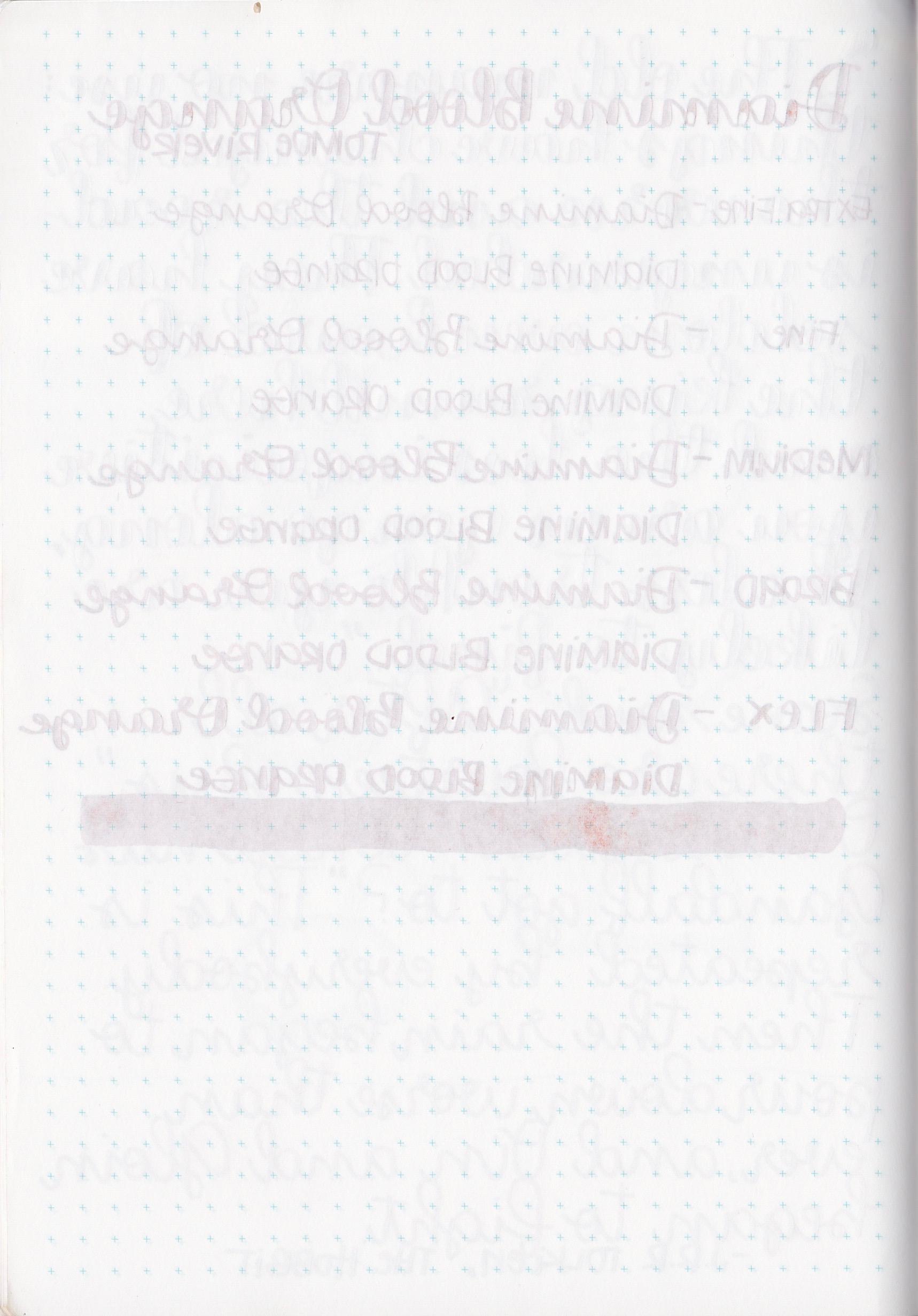 DBloodOrange - 6.jpg
