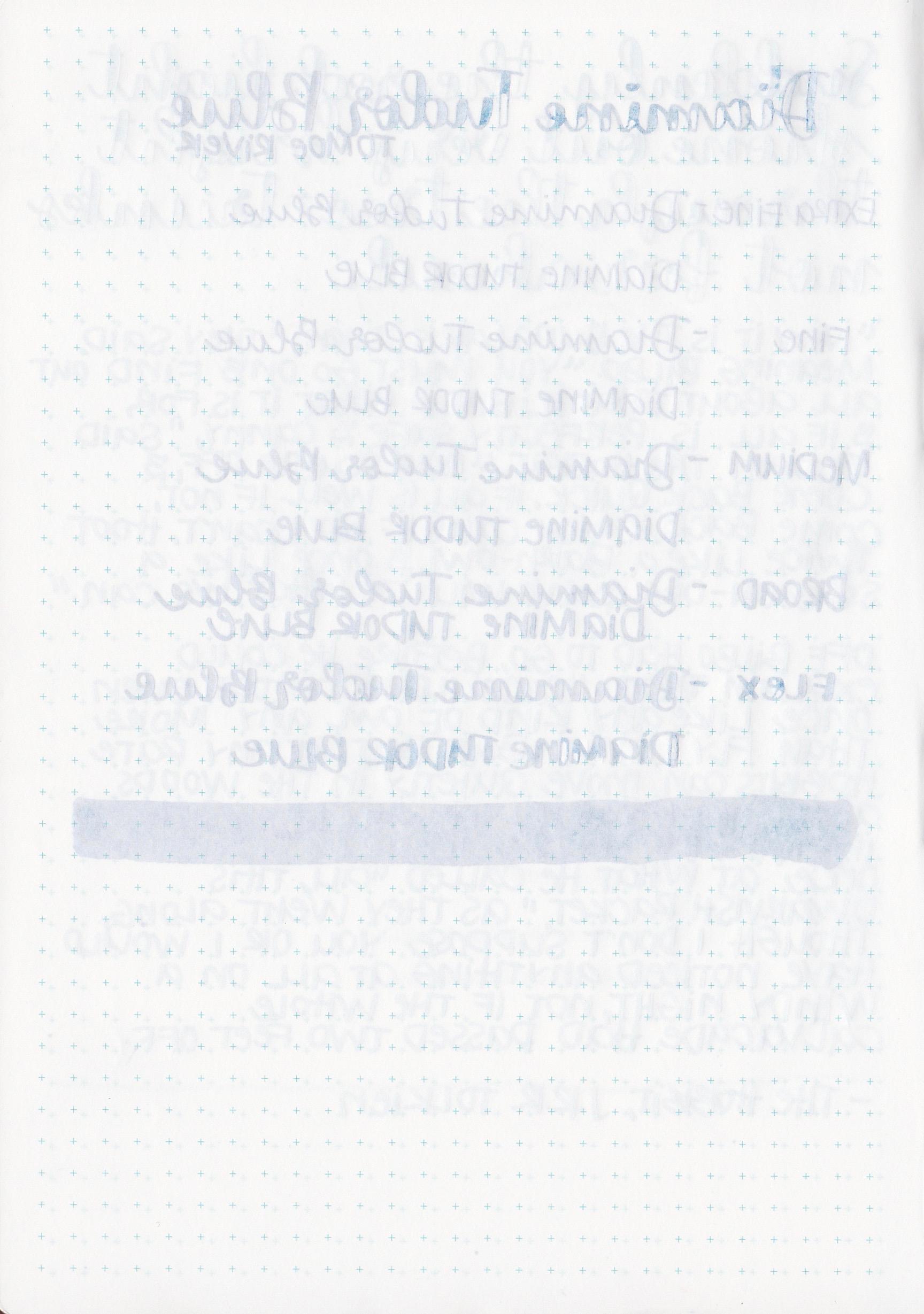 DTudorBlue - 8.jpg