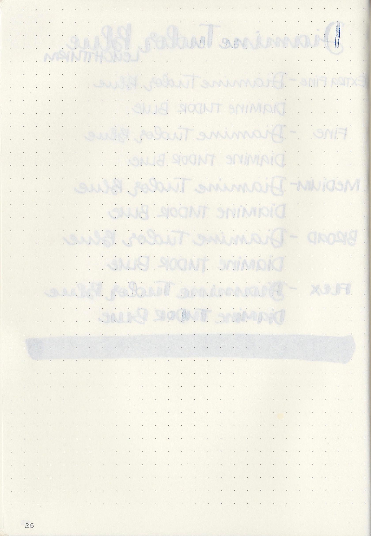DTudorBlue - 10.jpg