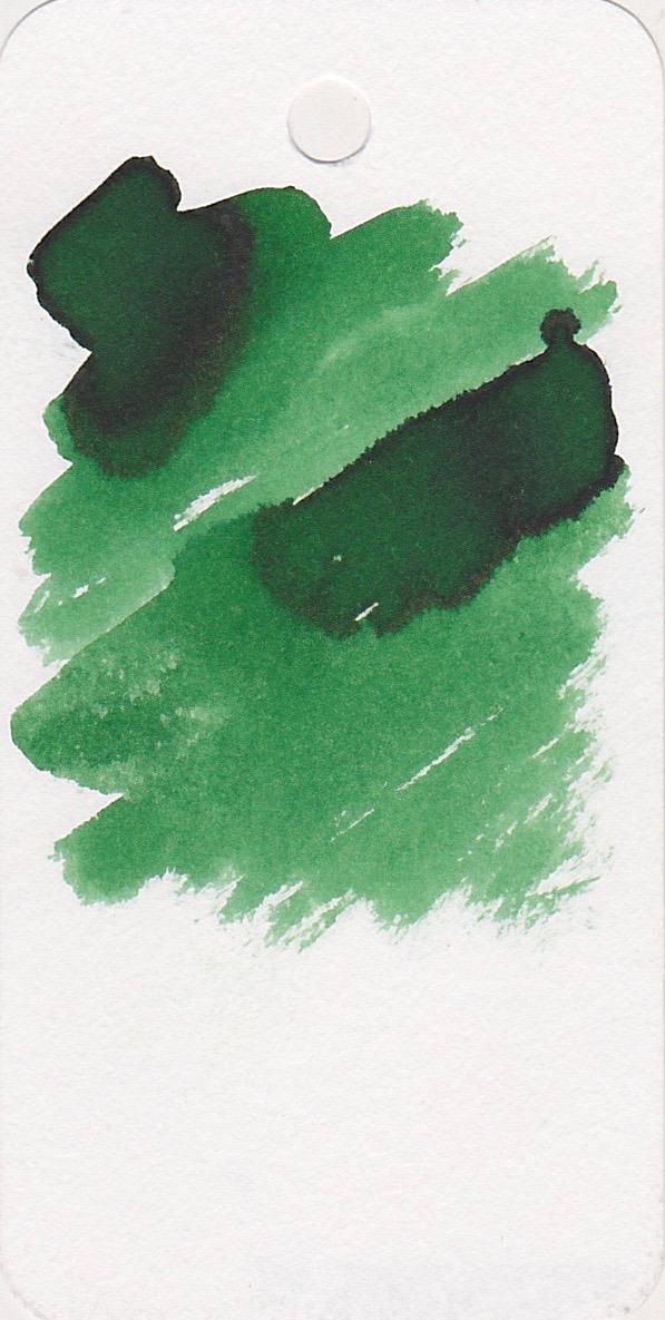 DDarkForest - 2.jpg