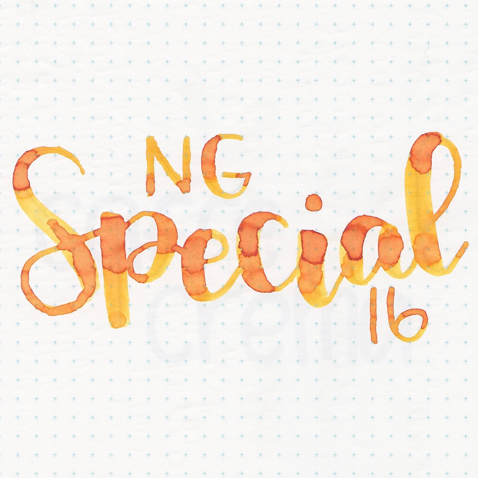 RONgSpecial16 - 6.jpg
