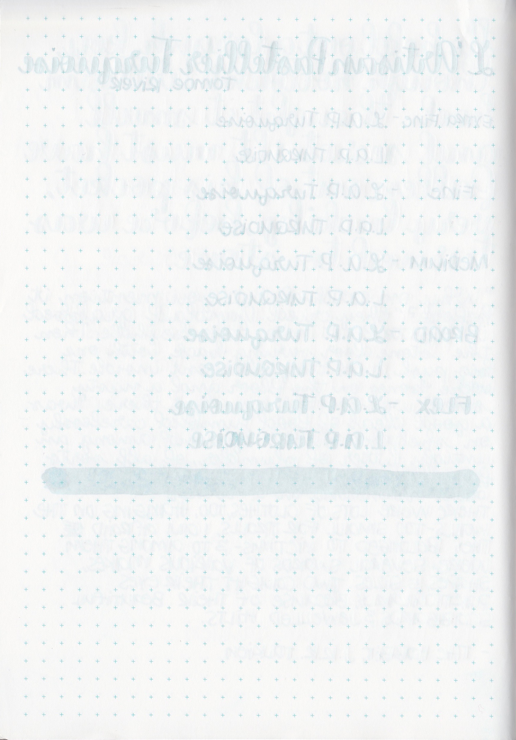 LAPTurquoise - 7.jpg