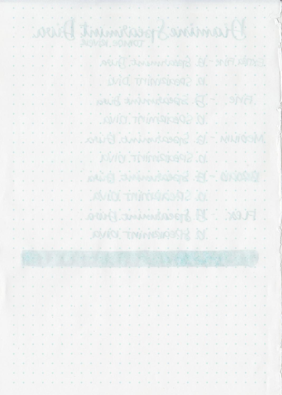 DSpearmintDiva-6.jpg