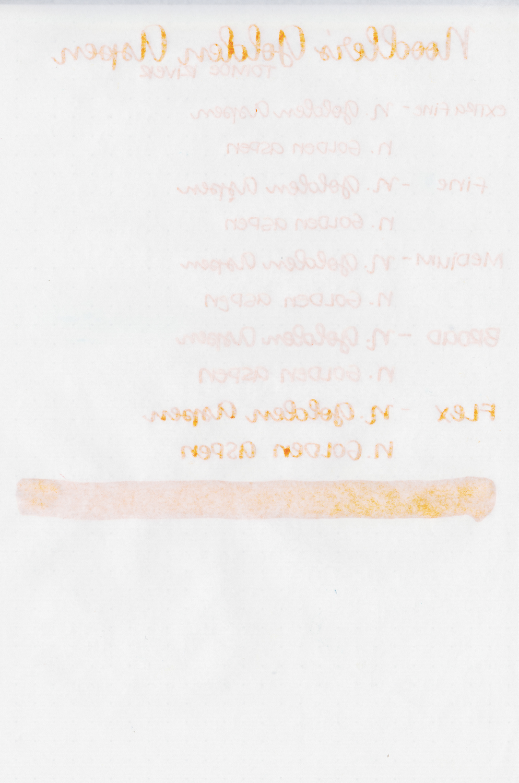 NoodlersGoldenAspen-6.jpg