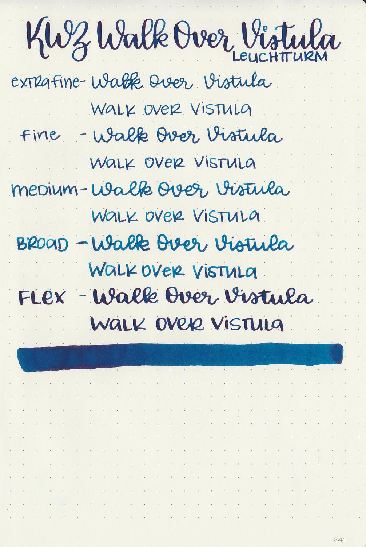 kwz-walk-over-vistula-6.jpg