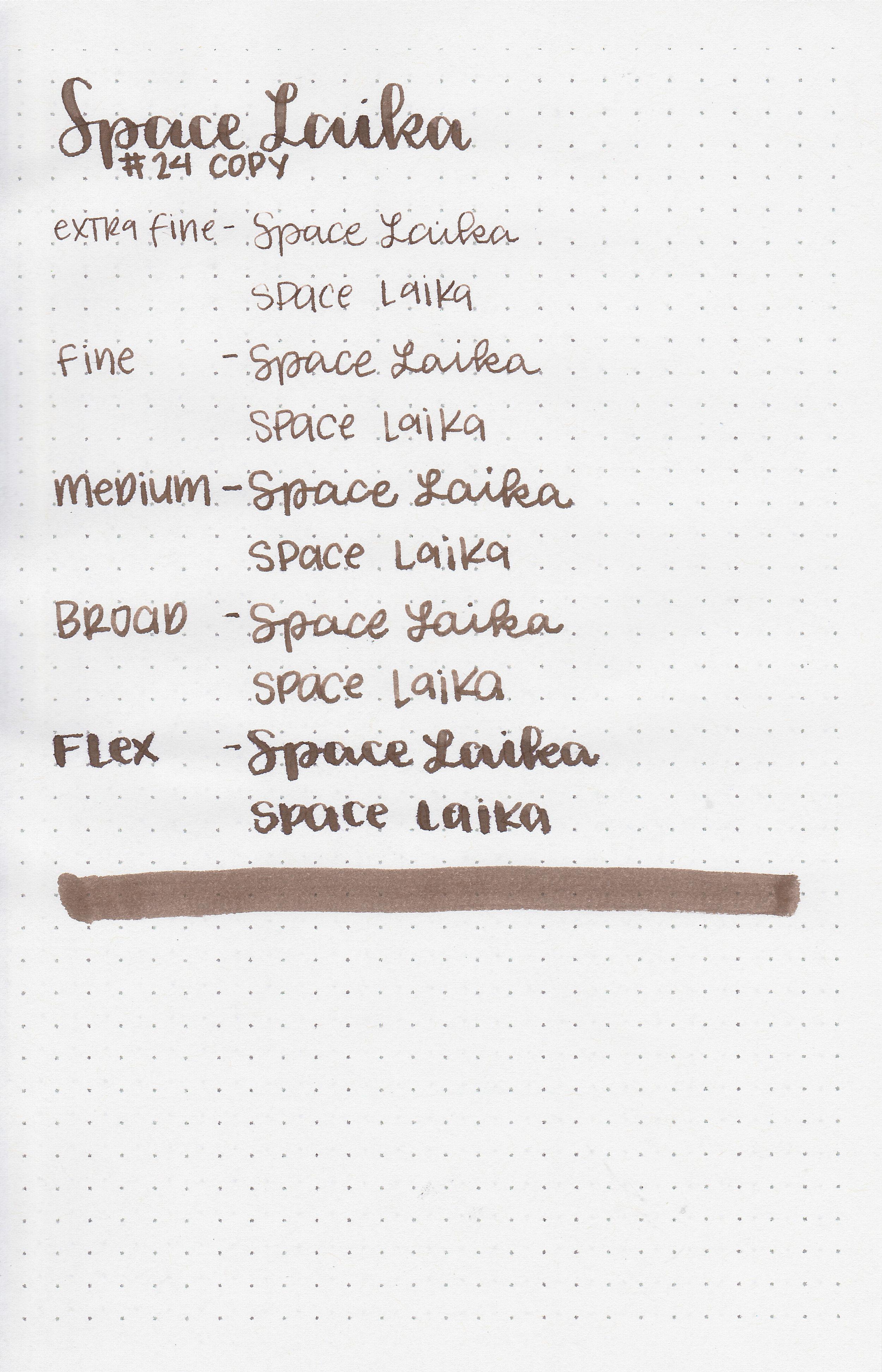 cv-space-laika-11.jpg
