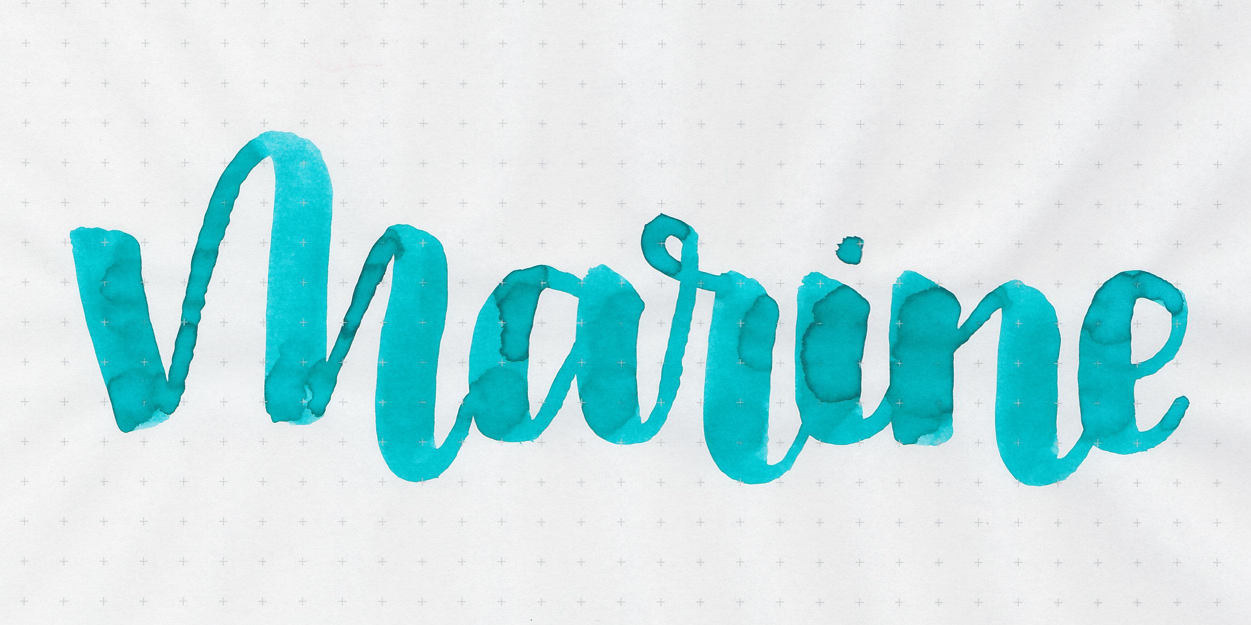 d-marine-2.jpg