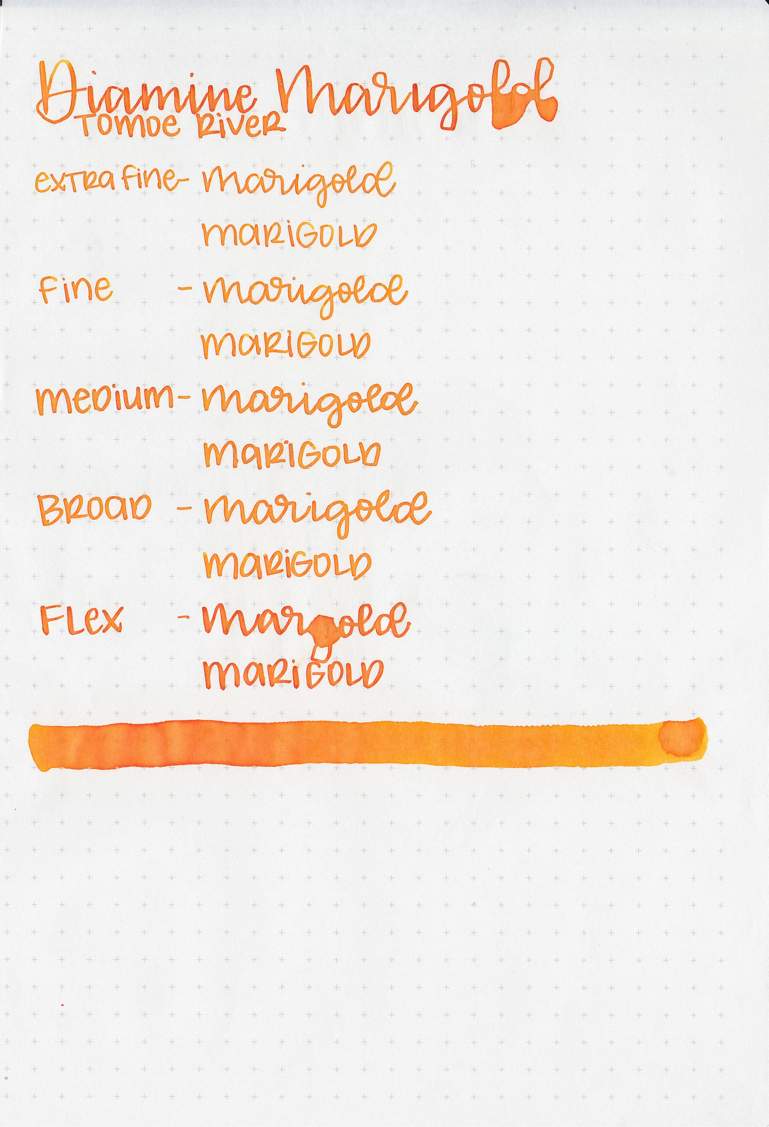 d-marigold-7.jpg