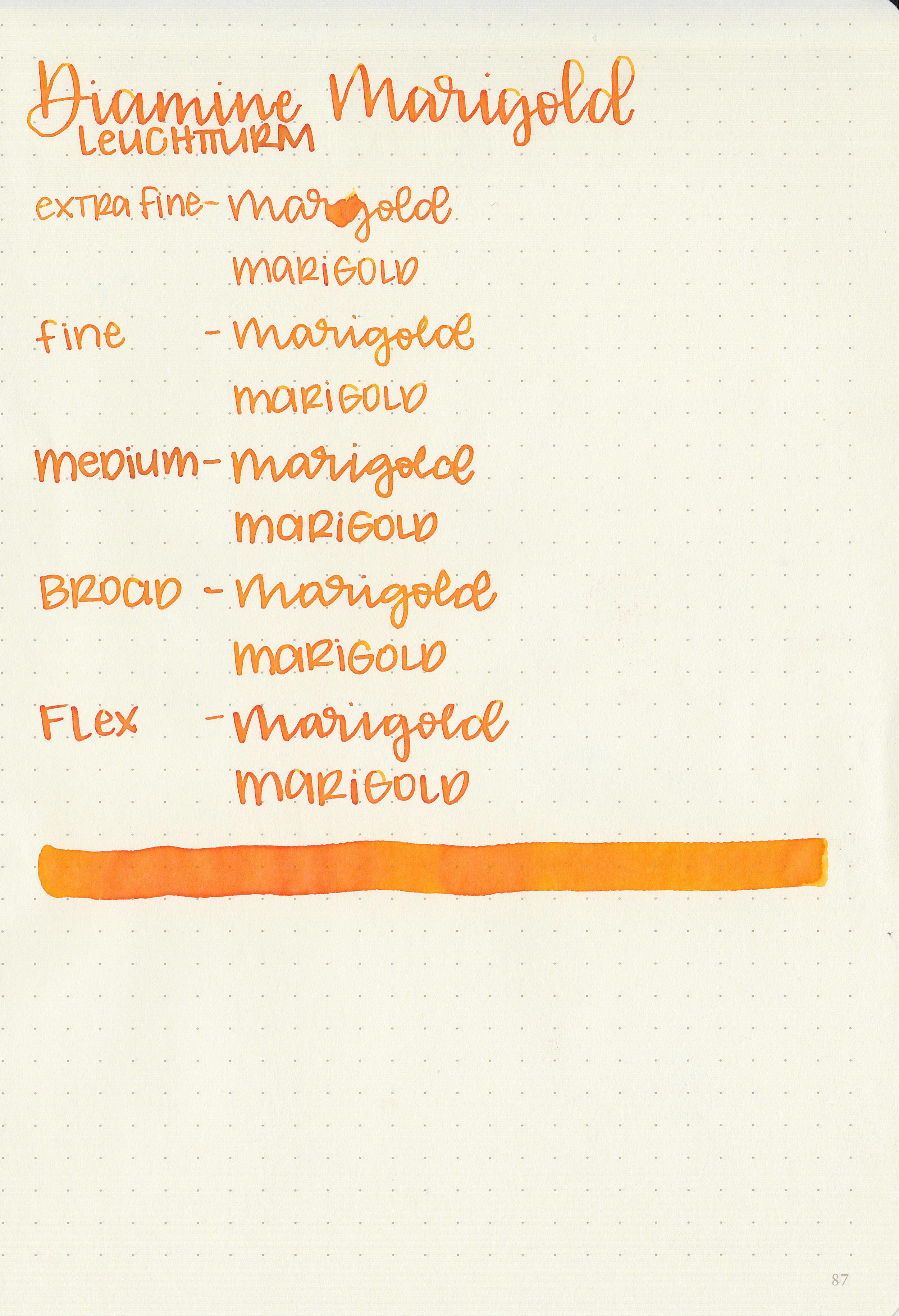 d-marigold-9.jpg