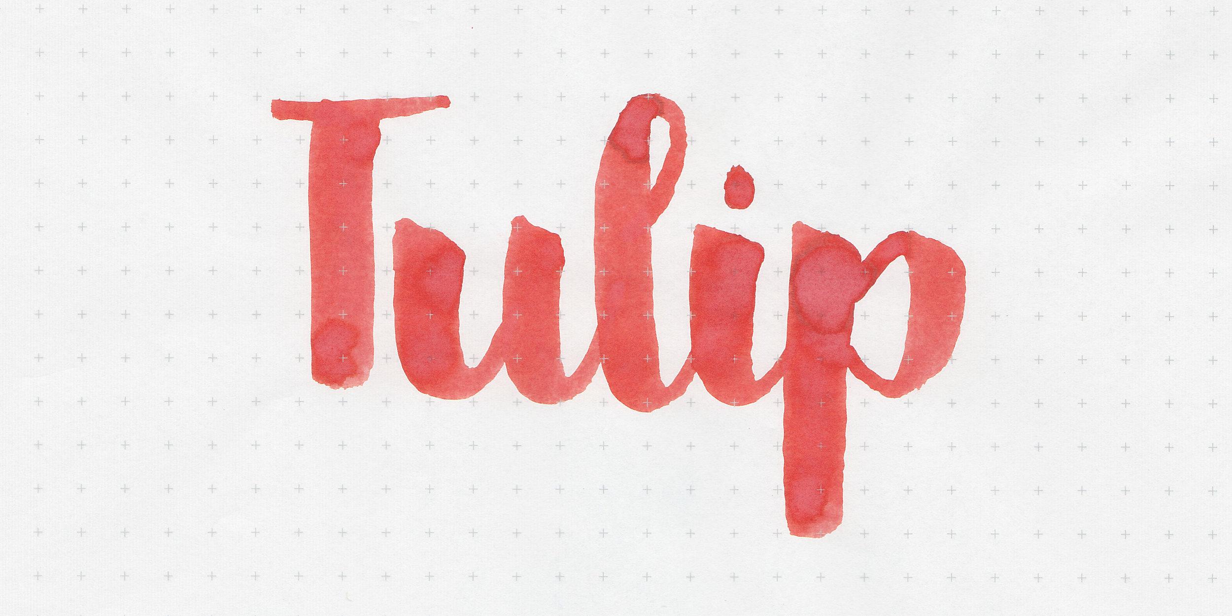 d-tulip-2.jpg