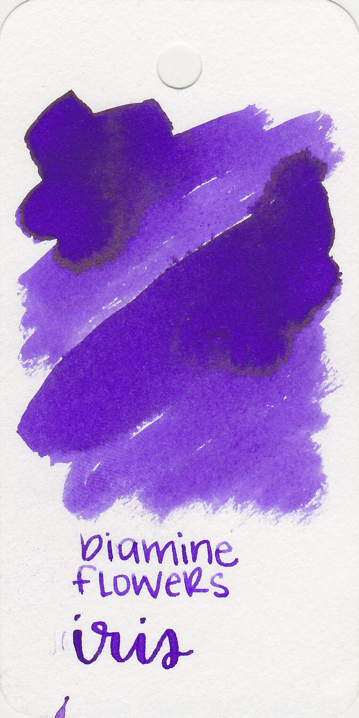 The color: - Iris is a medium, beautiful purple.
