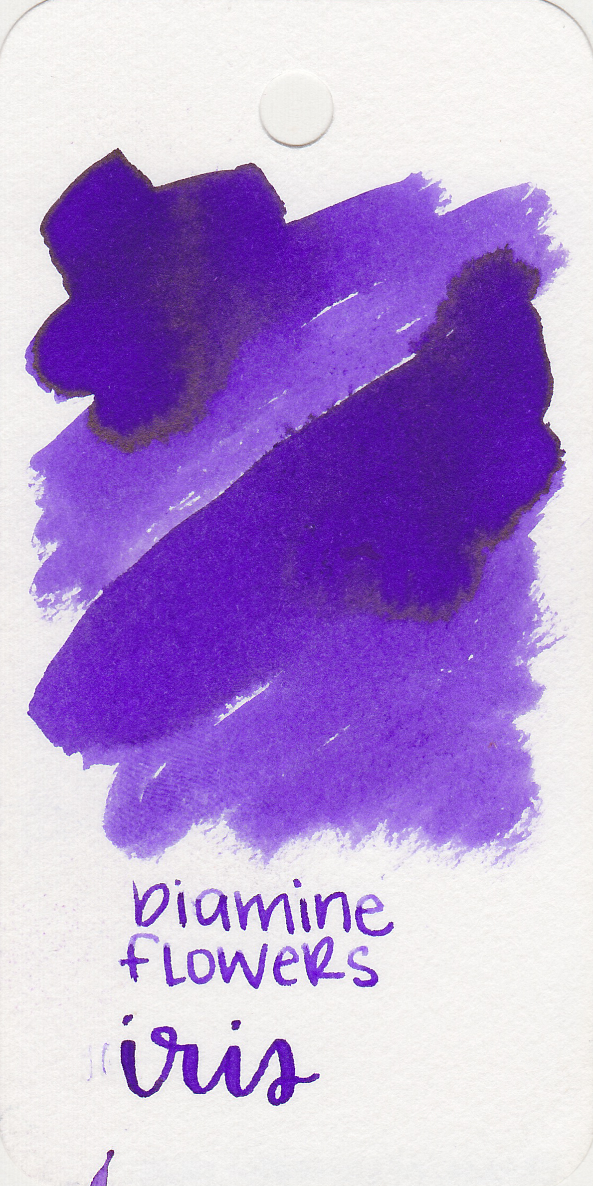 d-iris-1.jpg