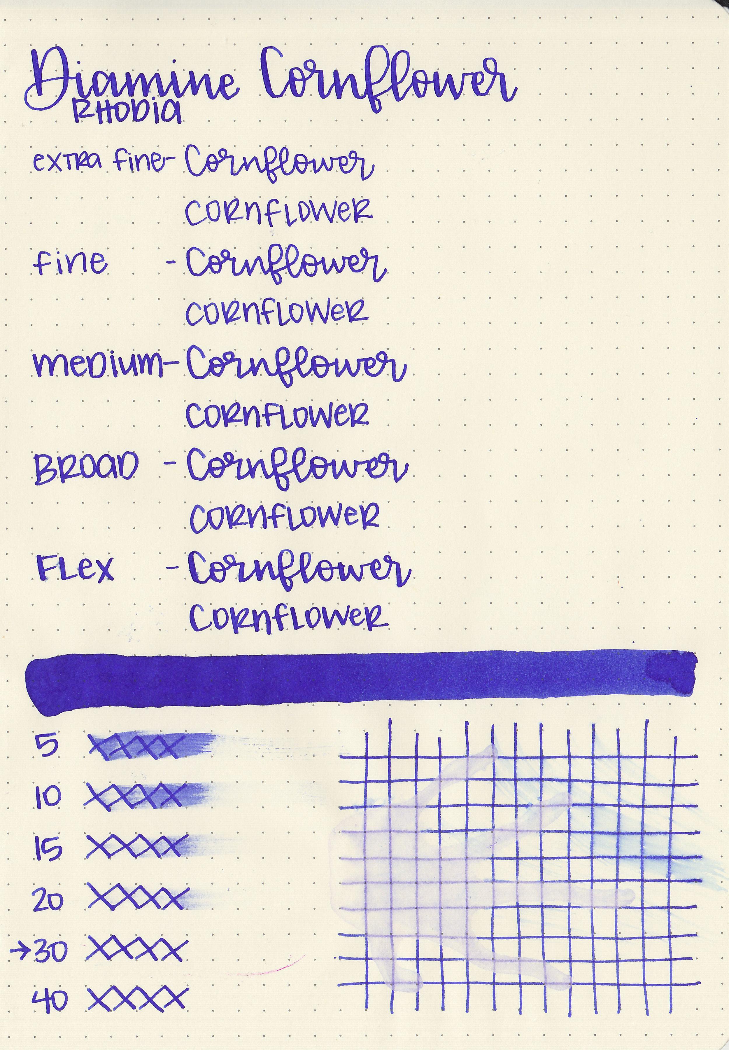 d-cornflower-5.jpg