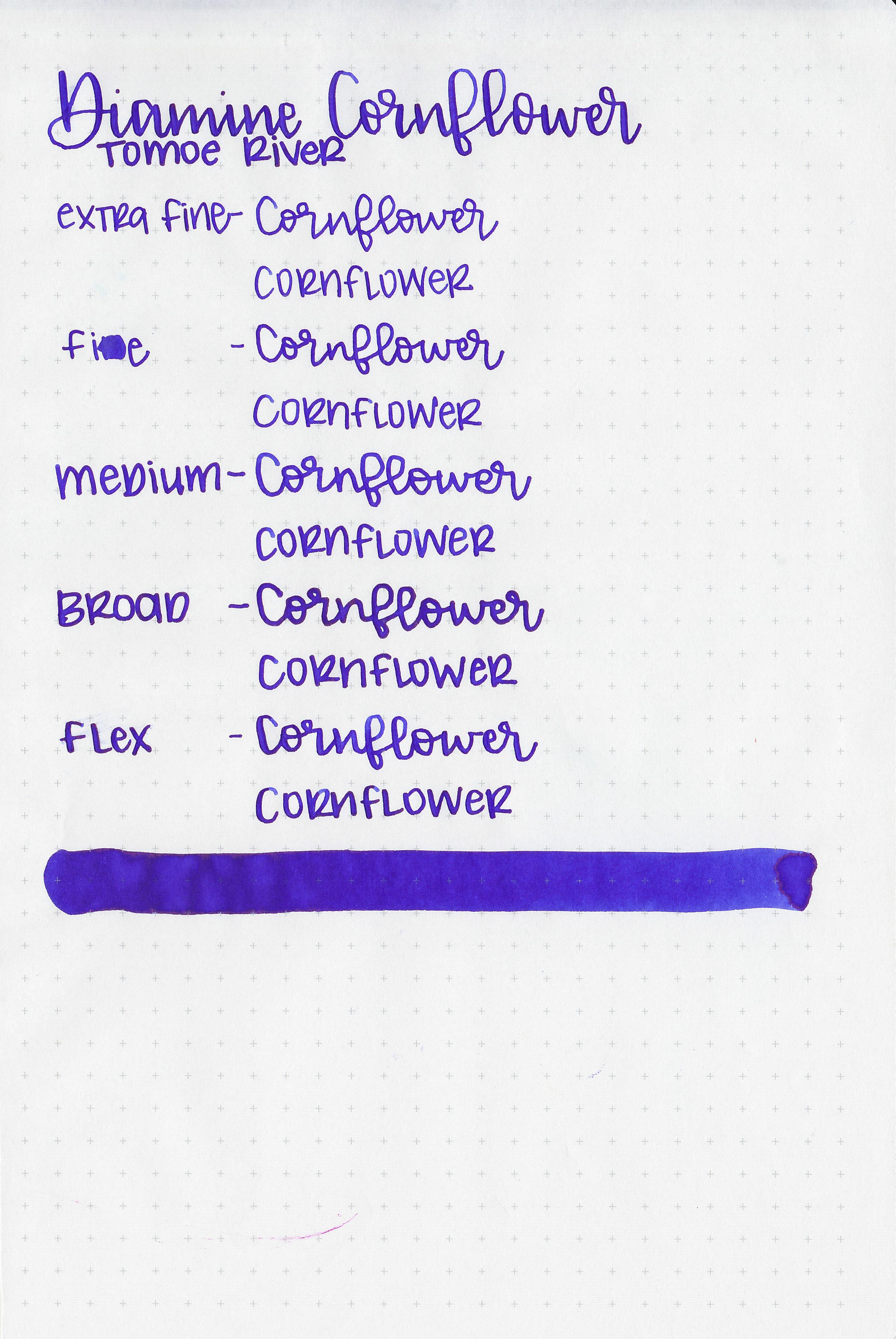 d-cornflower-7.jpg