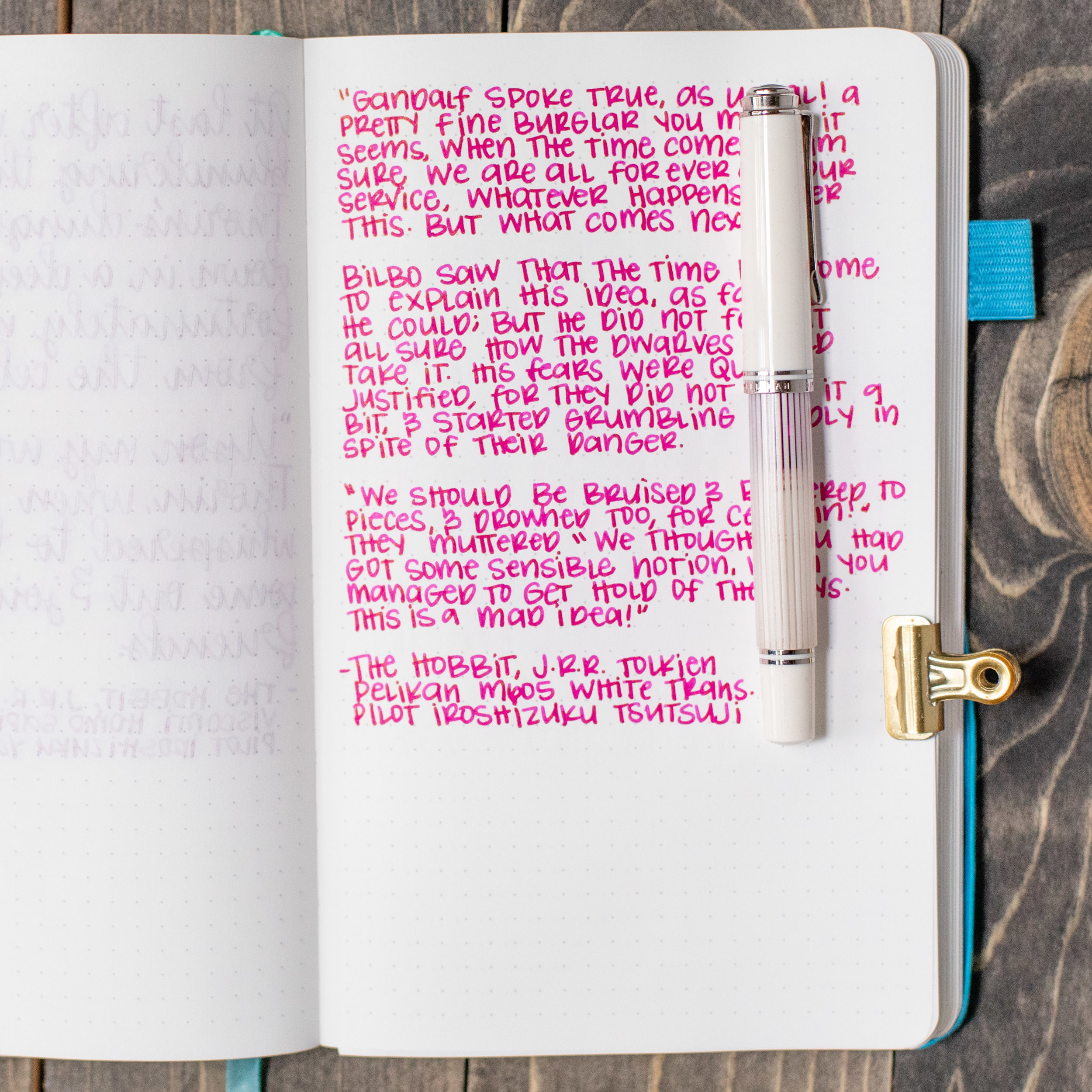 I used a medium Pelikan M605 White Transparent on an ivory Hippo Noto notebook. The ink had a wet flow.