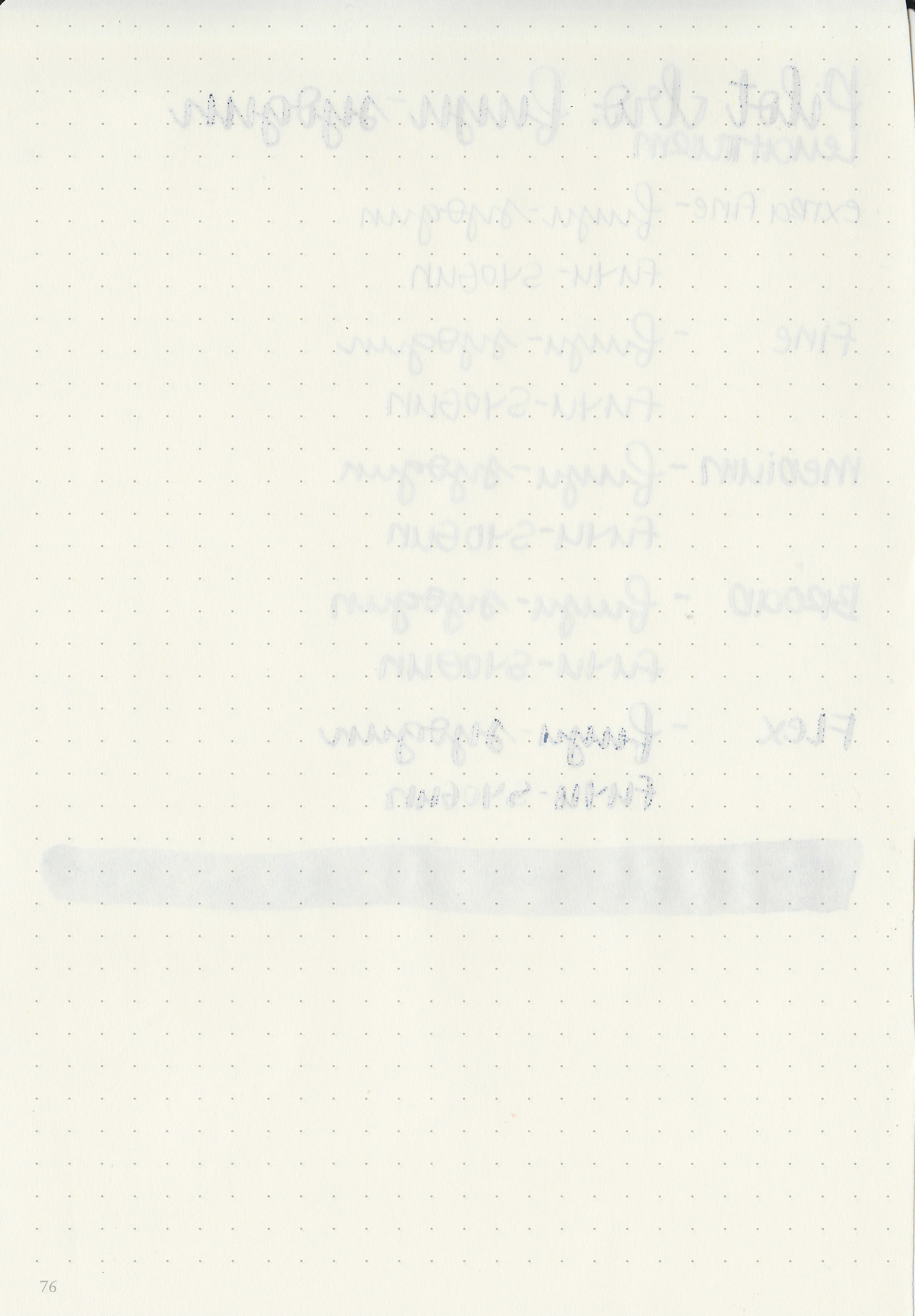 pi-fuyu-syogun-10.jpg