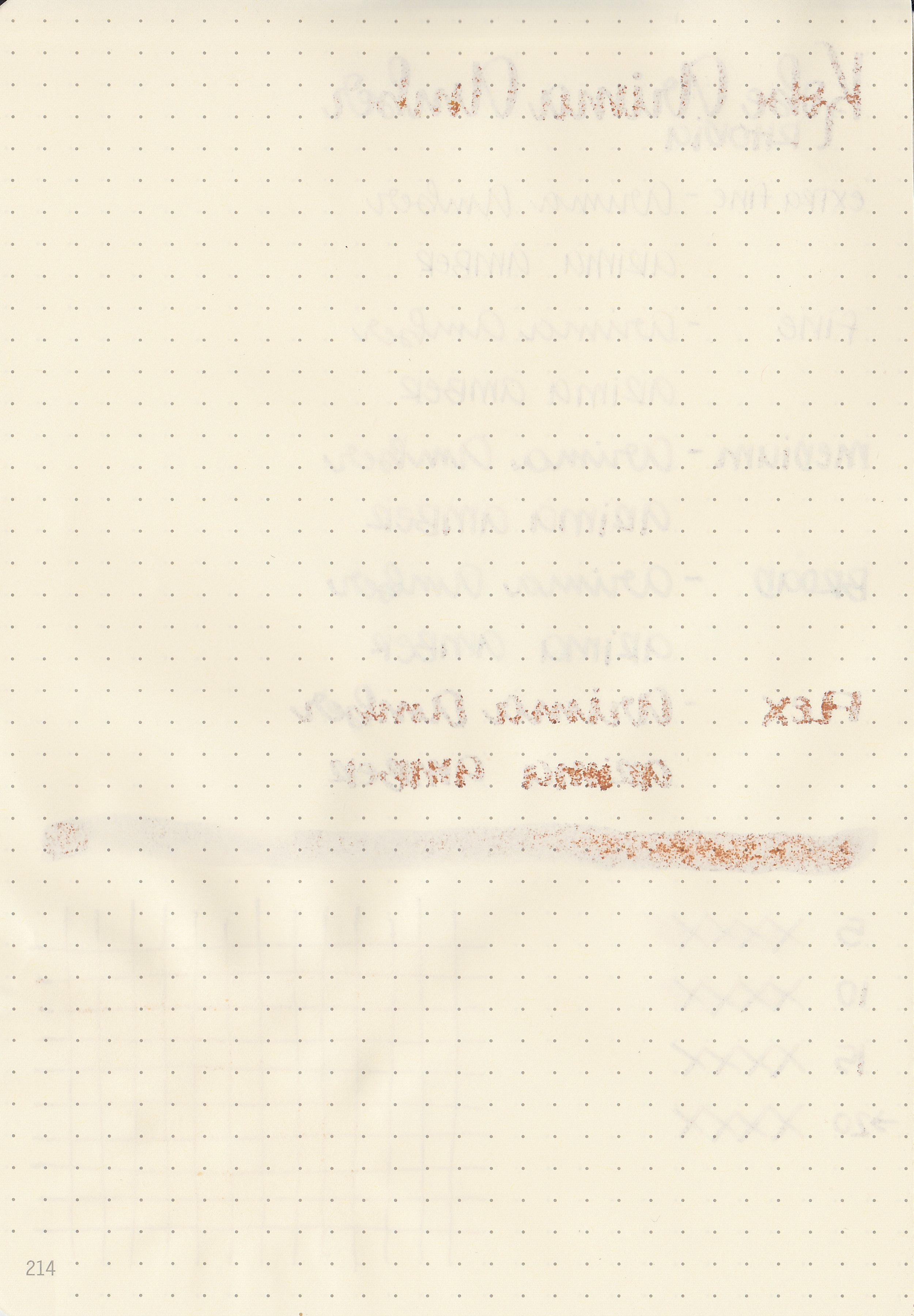 nk-arima-amber-2.jpg