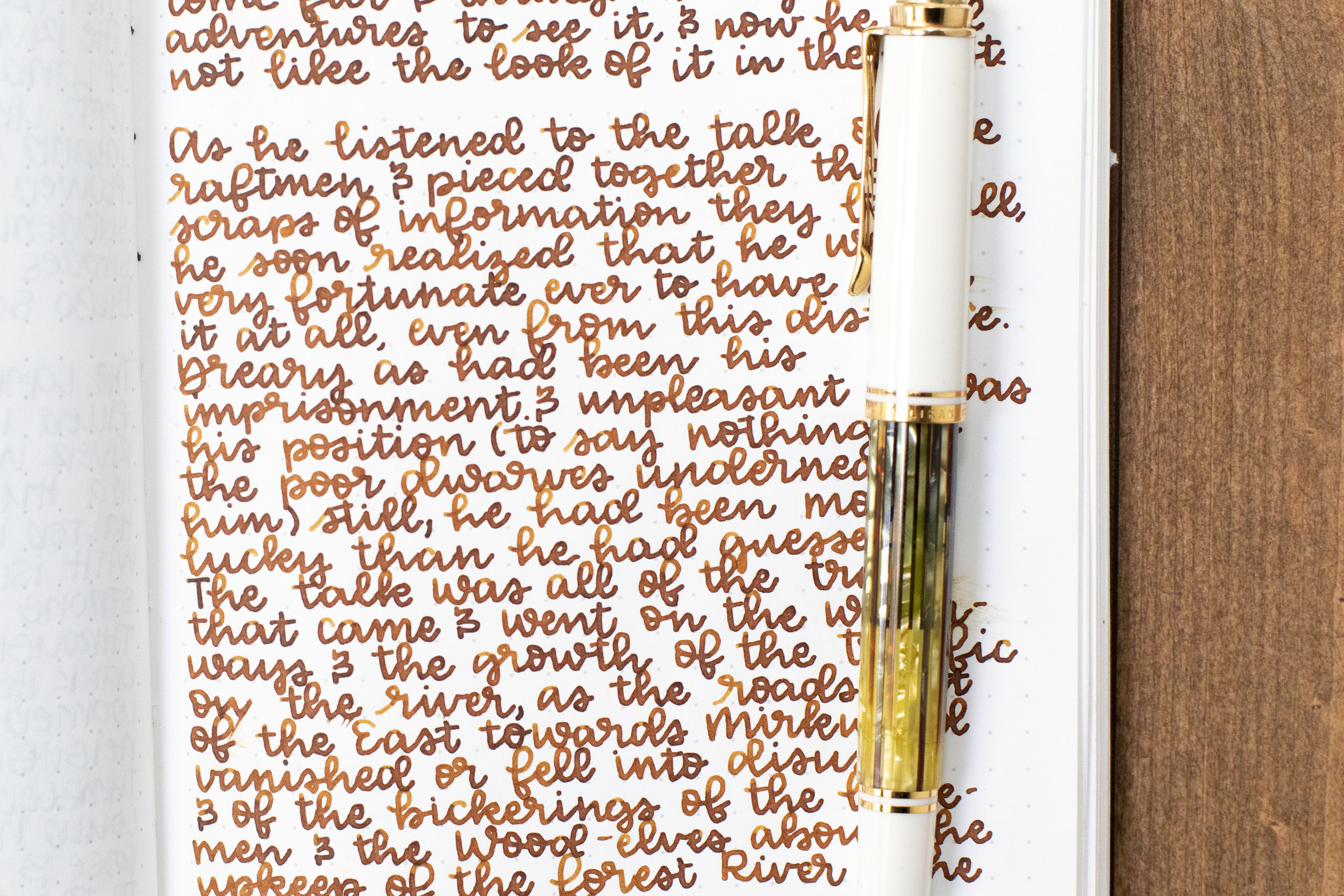 I used a medium Pelikan M400 White Tortoise on Tomoe River 68gsm. The ink had a wet flow.