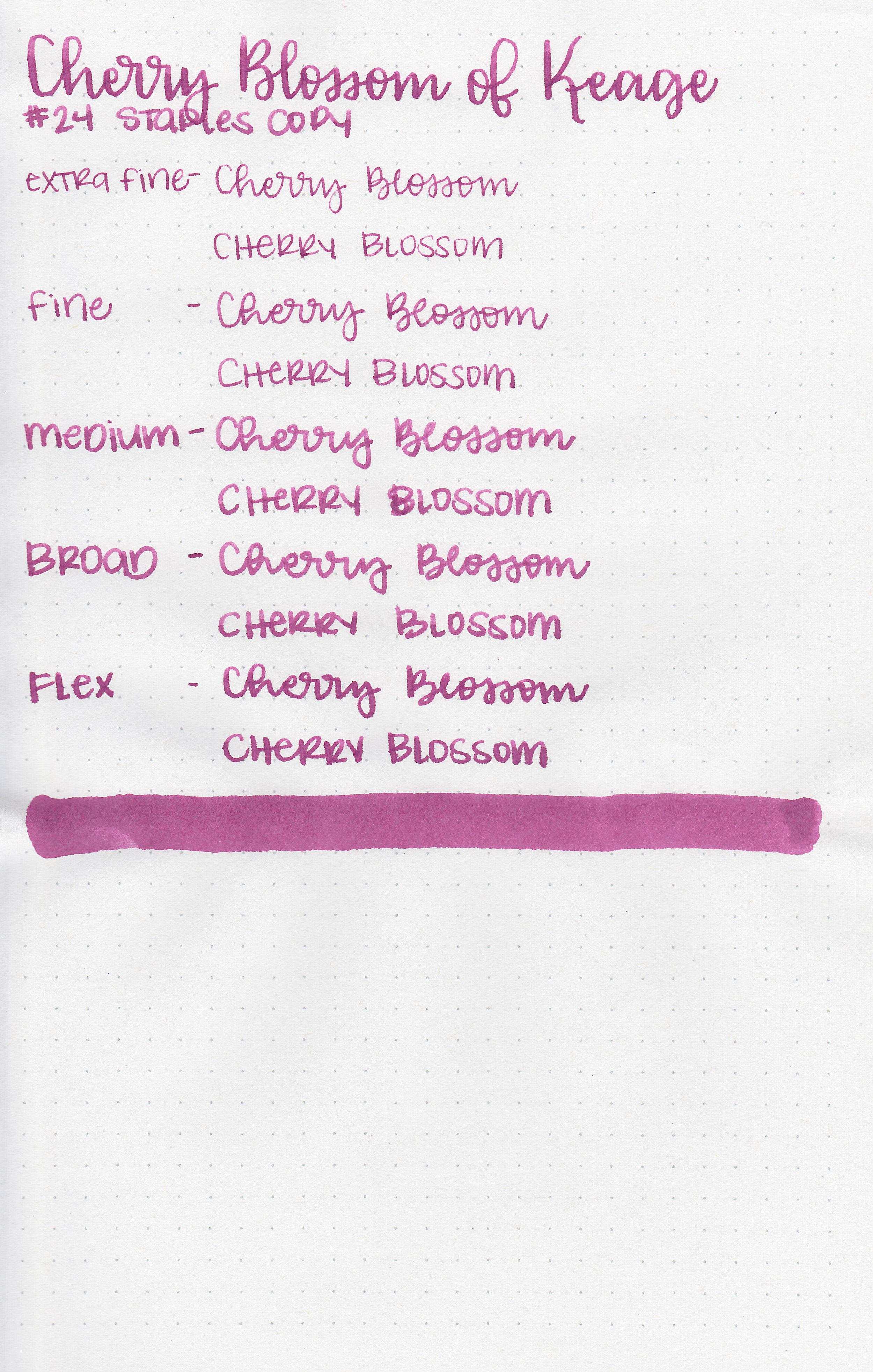 kyo-cherry-blossom-11.jpg