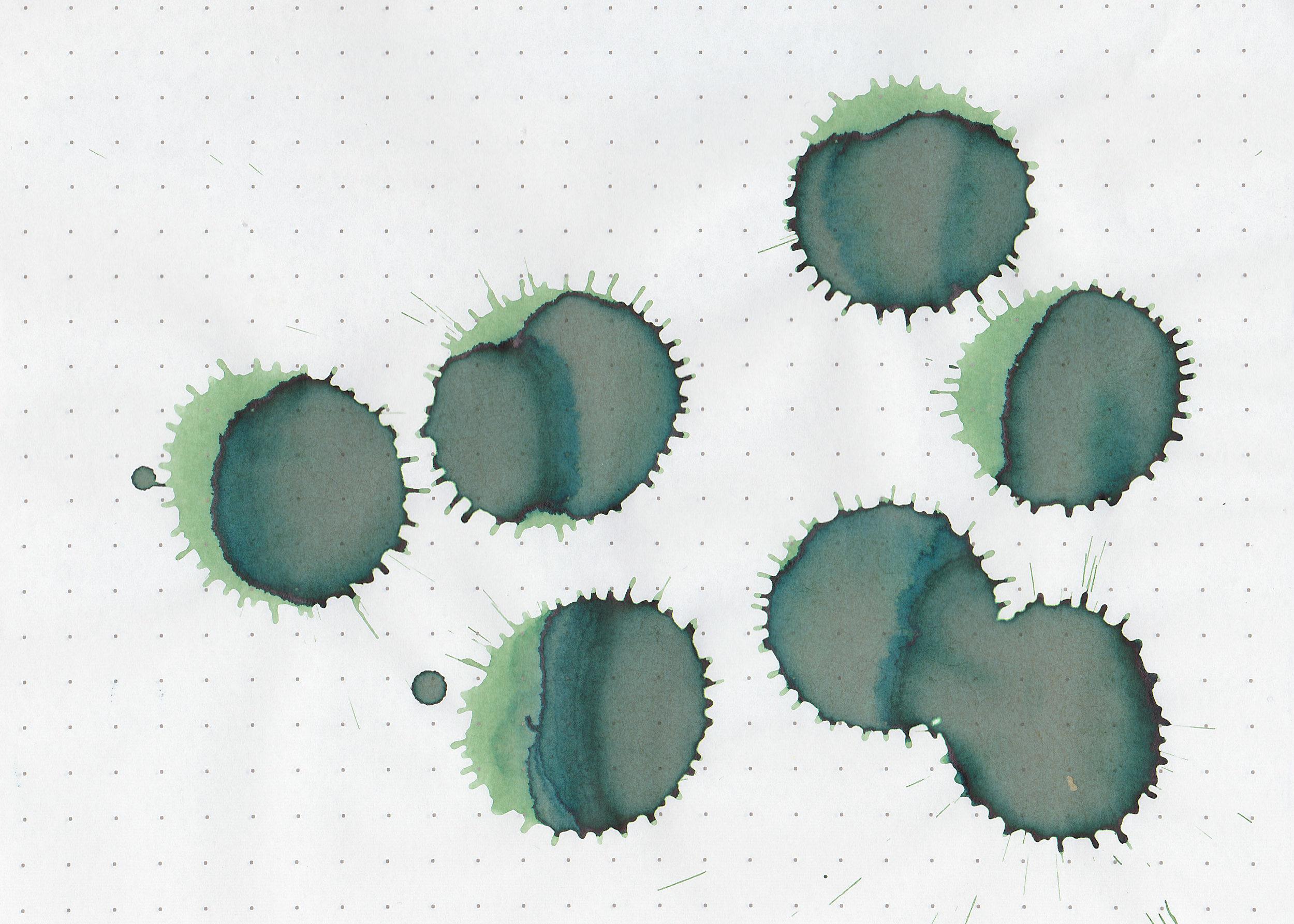 ro-avocado-4.jpg
