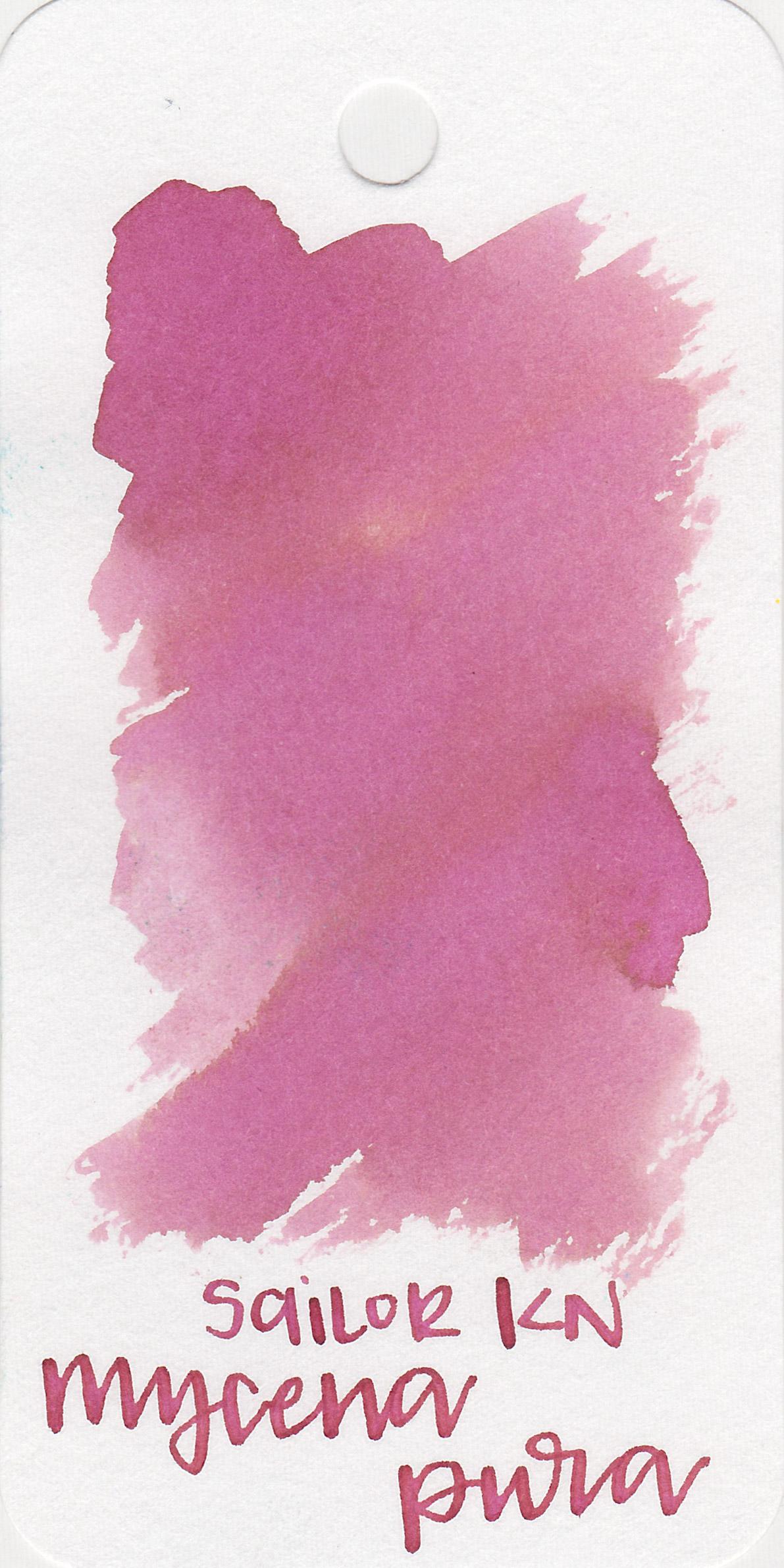 kn-mycena-pura-1.jpg