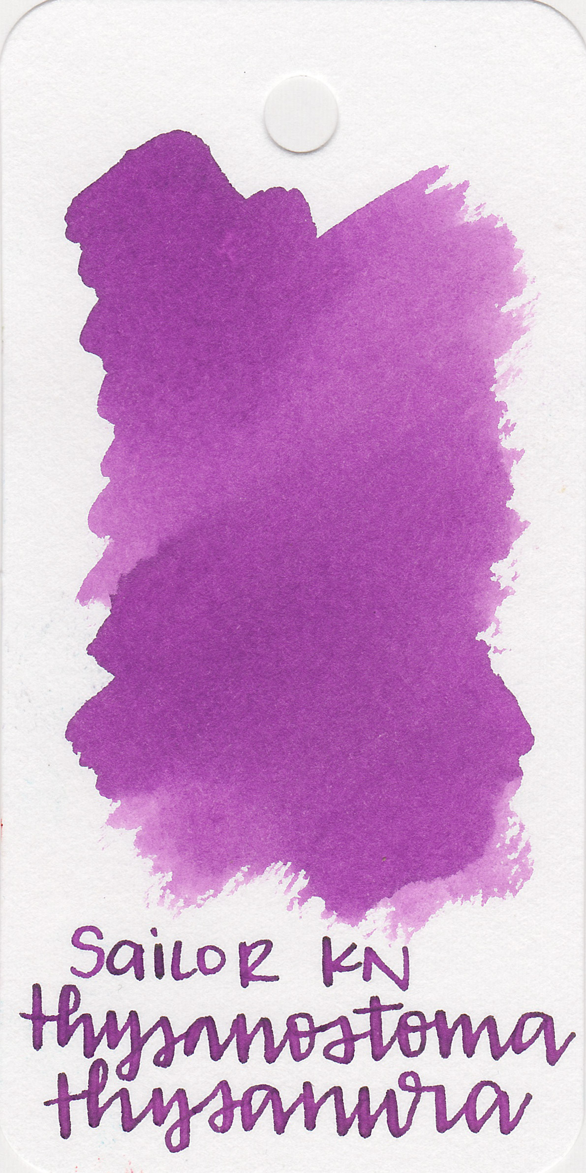 The color: - TT is a medium purple with a small pop of green sheen.