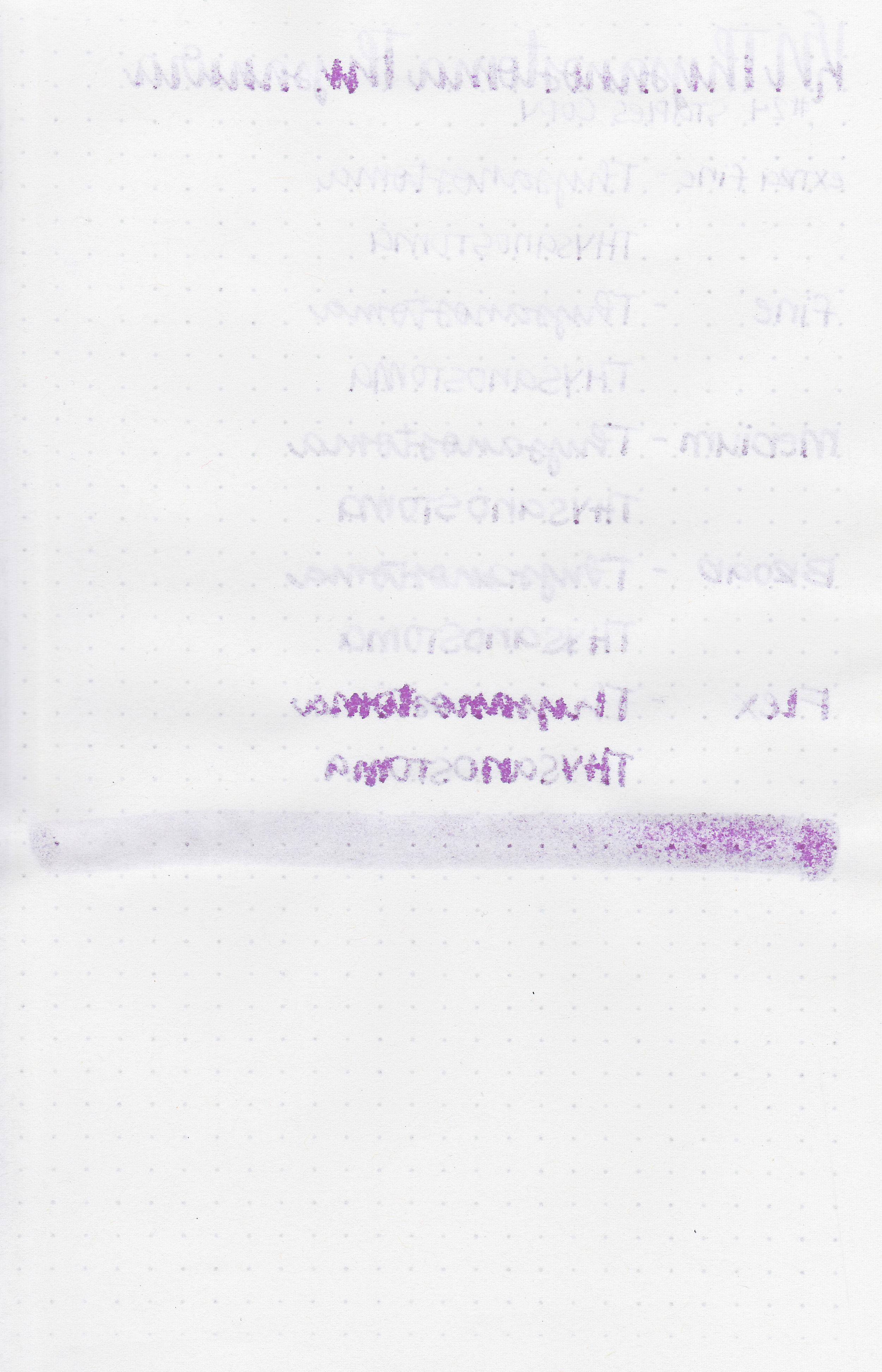 kn-thysanostoma-thysanura-10.jpg