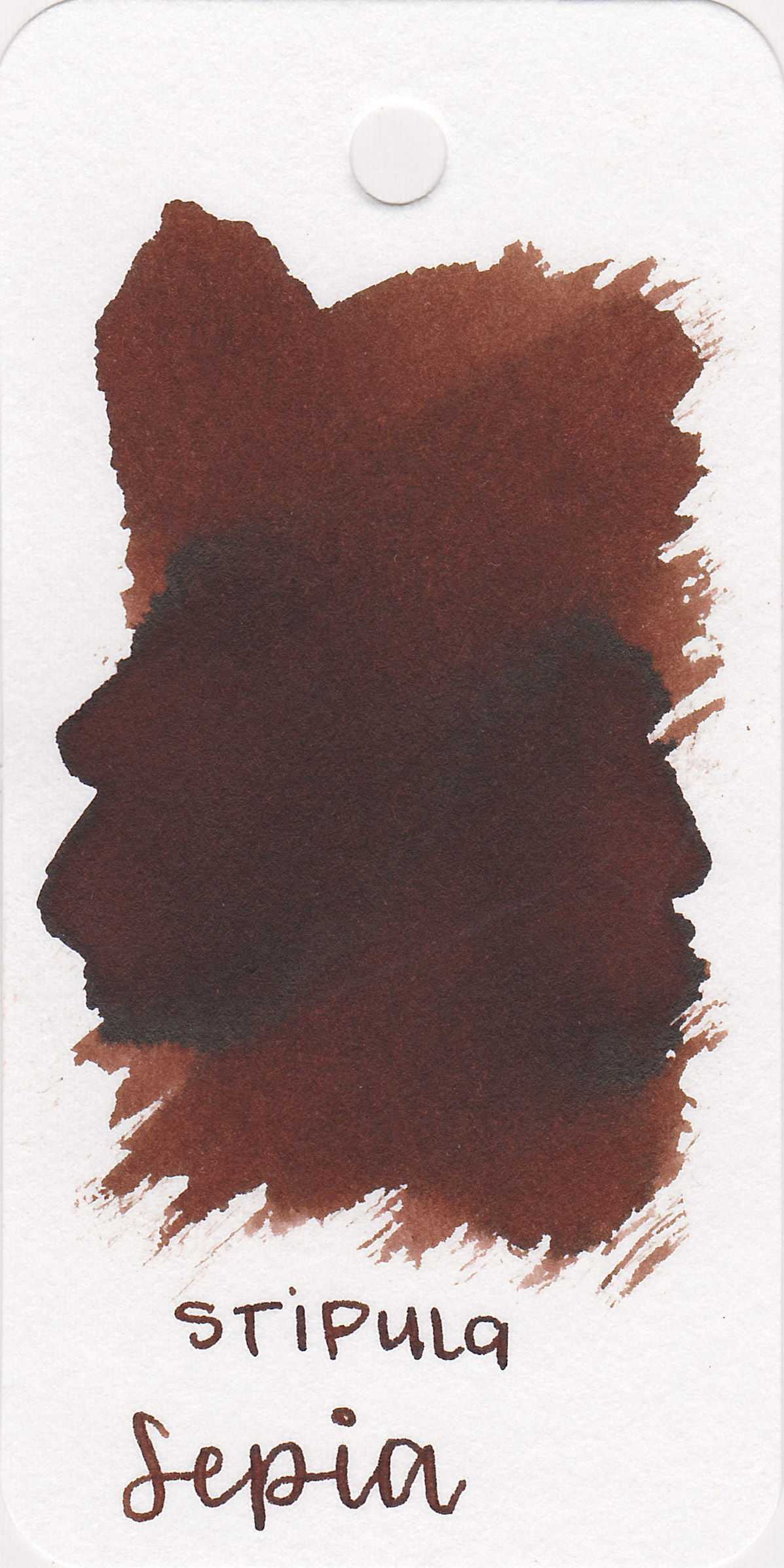 The color: - Sepia is a medium, warm toned brown. It doesn't quite look sepia to me, more of a warm brown.