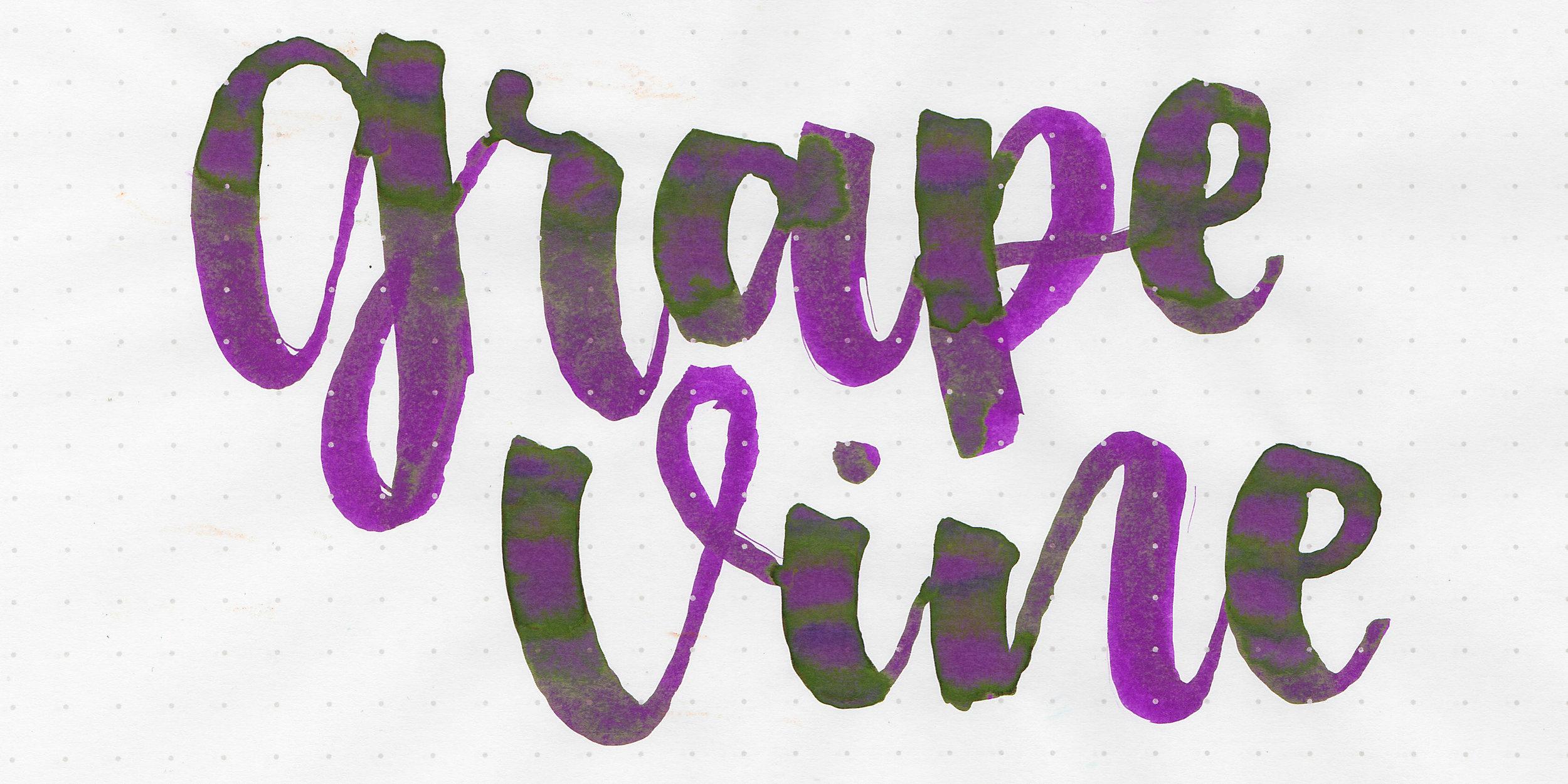 tbm-grape-vine-2.jpg