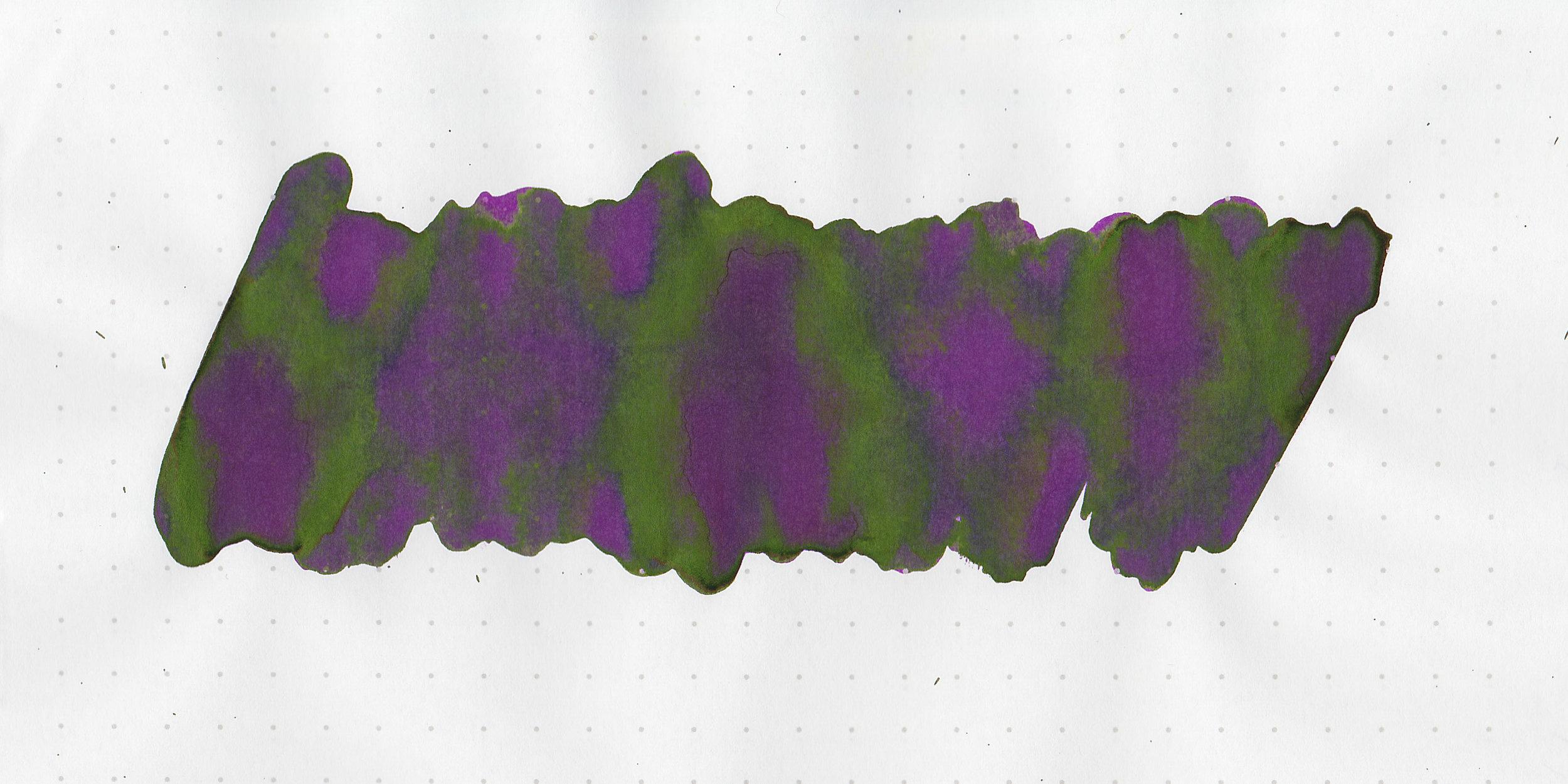 tbm-grape-vine-3.jpg