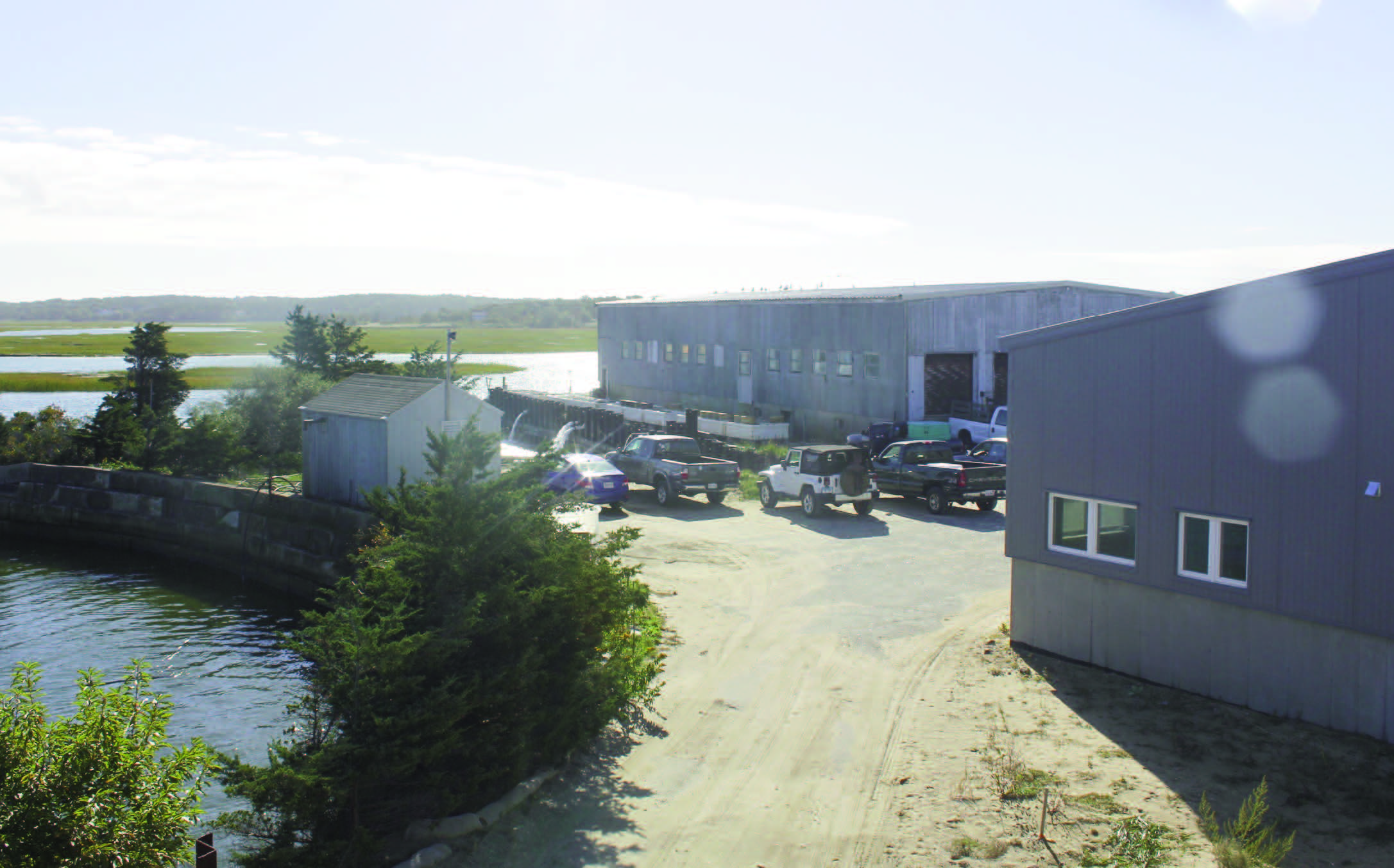 ARC_ Seeding Aquaculture on the Cape.jpg
