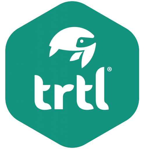 trtl pillow png_0.jpg