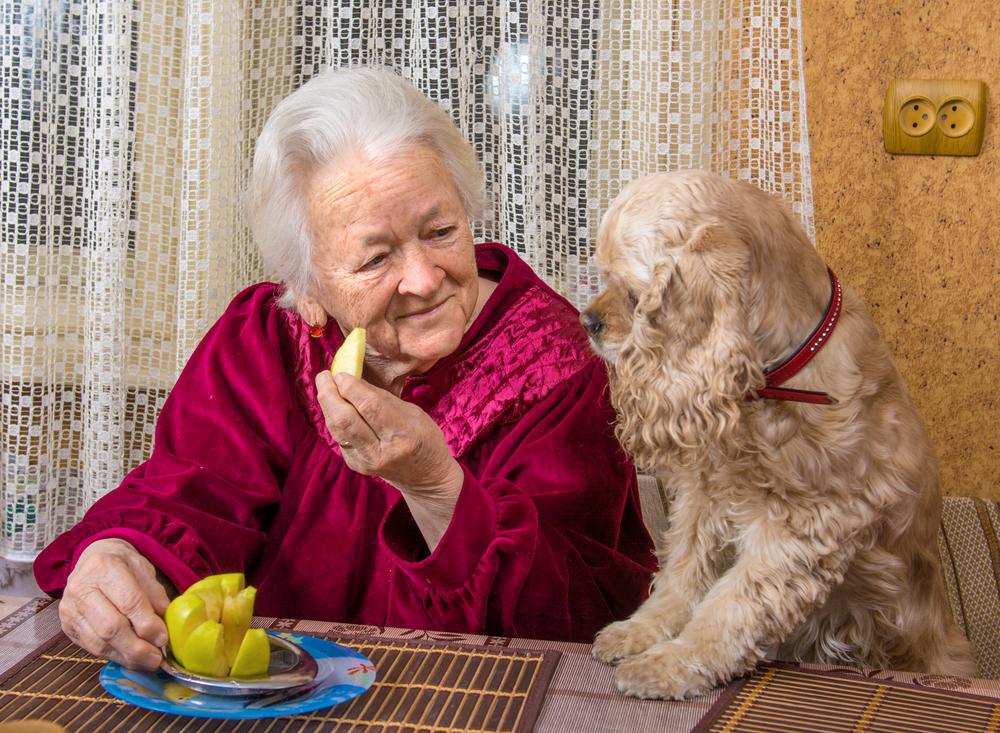 woman and dog.jpg
