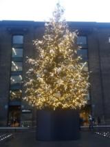 Tree at Granary Square, Kings X