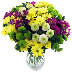 Chrysanthemums - our favourite of all native Asian flowers