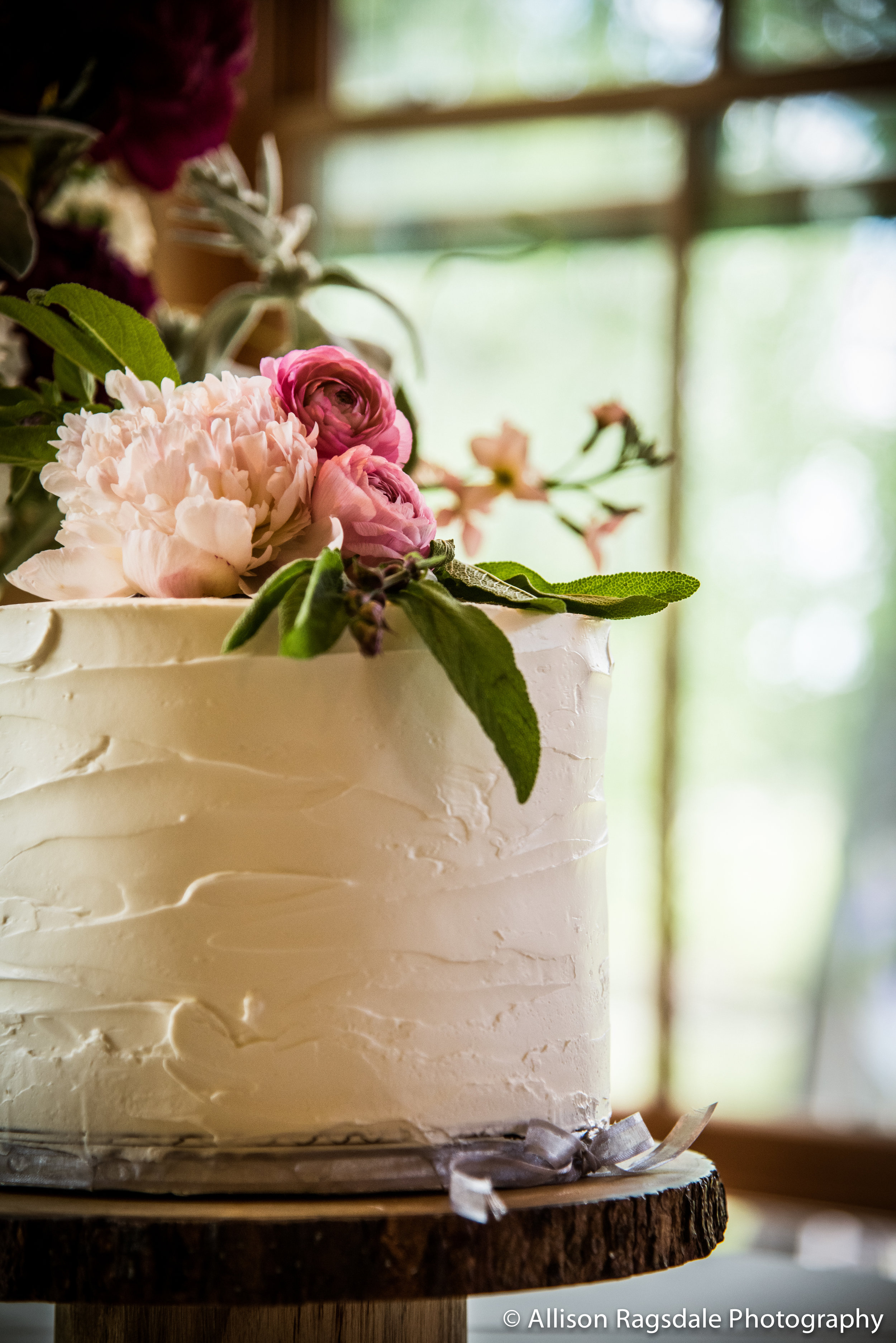 Allison Ragsdale Photography, Skillfully Decadent cake