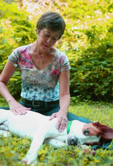 Shannon facilitating a pet healing session on Gus, who clearly loved receiving the healing energies.
