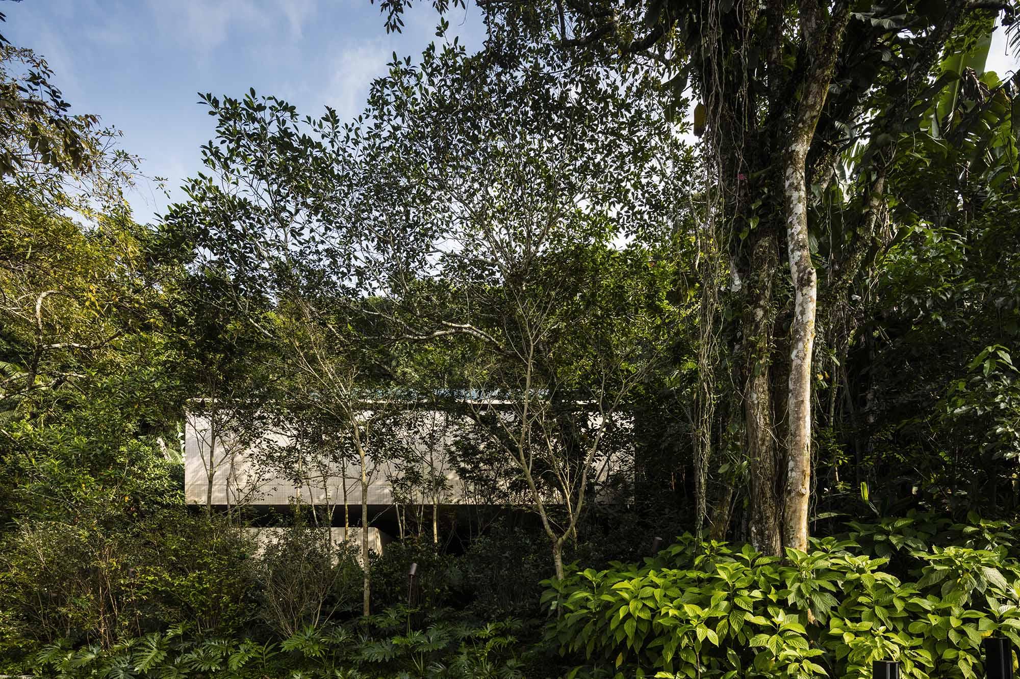 H-House-Life-Jungle-House-Casa-Da-Mata-studio-mk27-mk27_namata_fernandoguerra_medium(1).JPG
