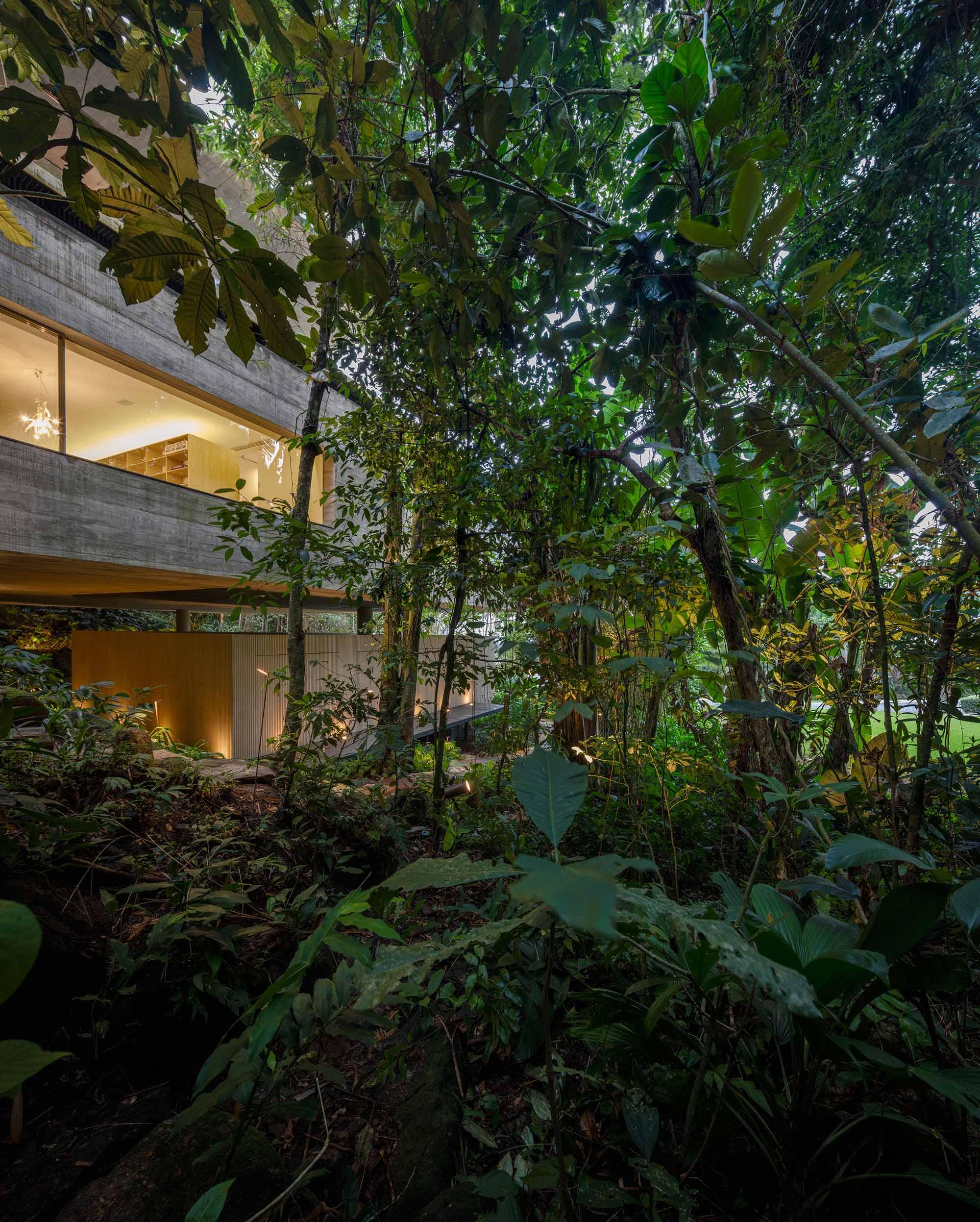 H-House-Life-Jungle-House-Casa-Da-Mata-studio-mk27-mk27_namata_fernandoguerra_medium(49).JPG