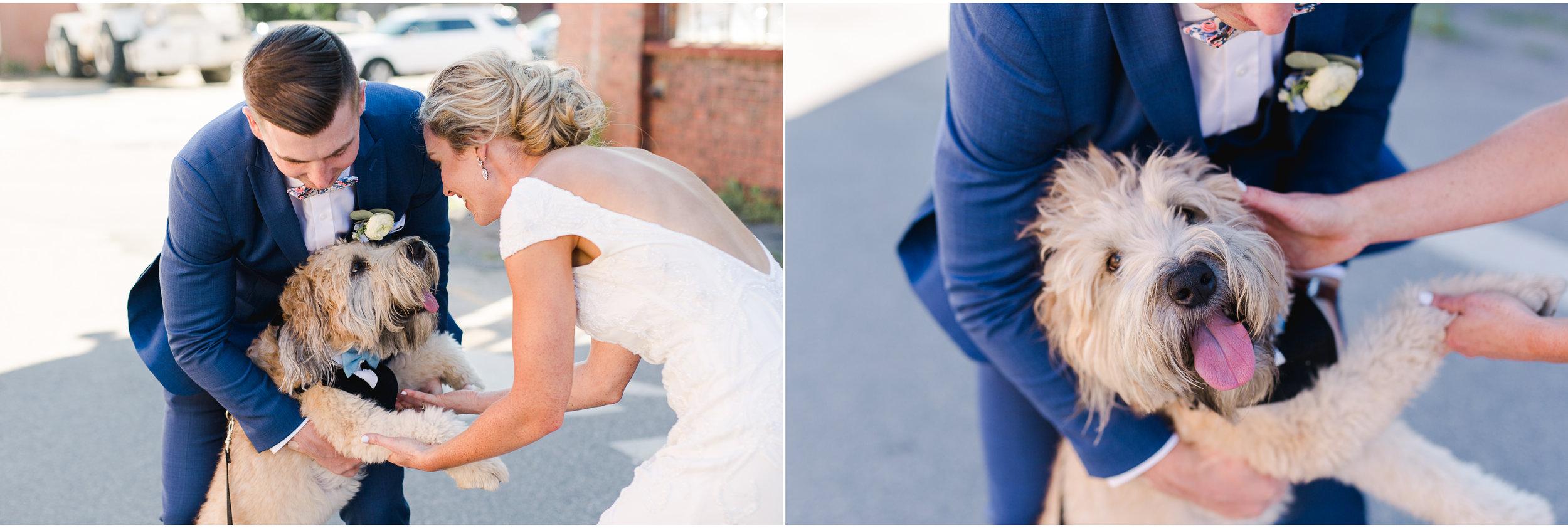 Portland, Maine Wedding at Ocean Gateway 29.jpg