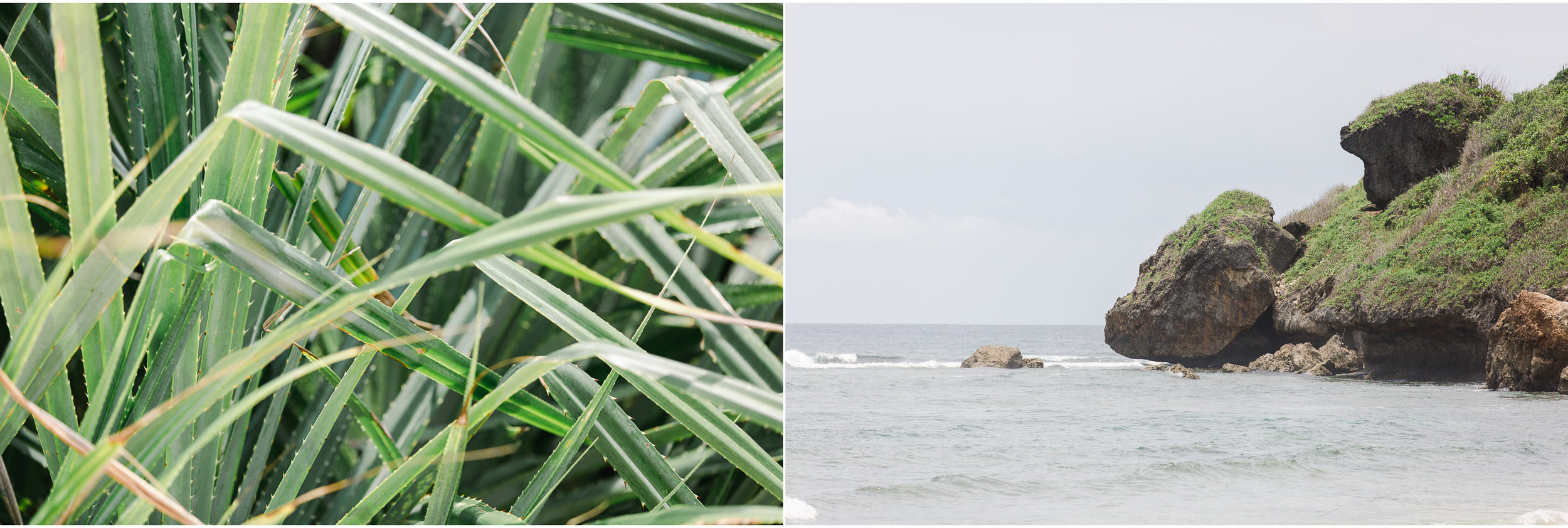 Maine Wedding Photographer Travels to Bali 5.jpg