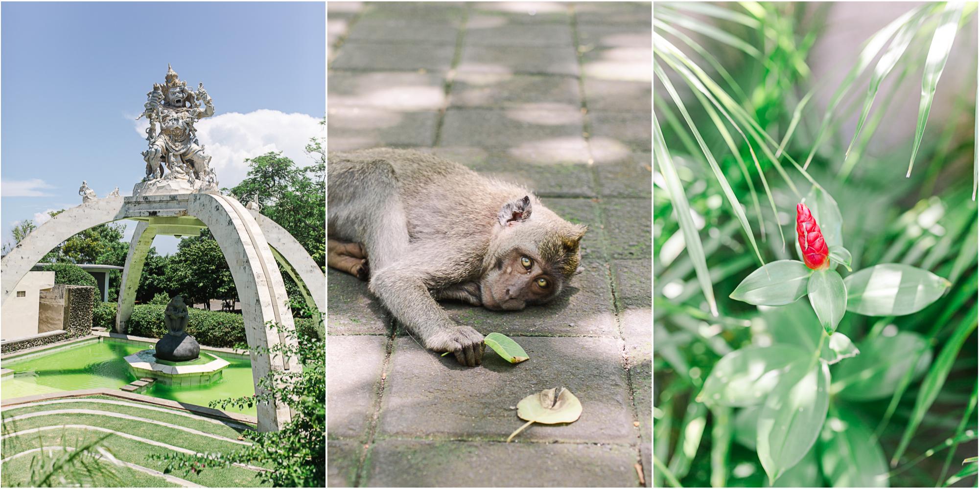 Maine Wedding Photographer Travels to Bali 13.jpg