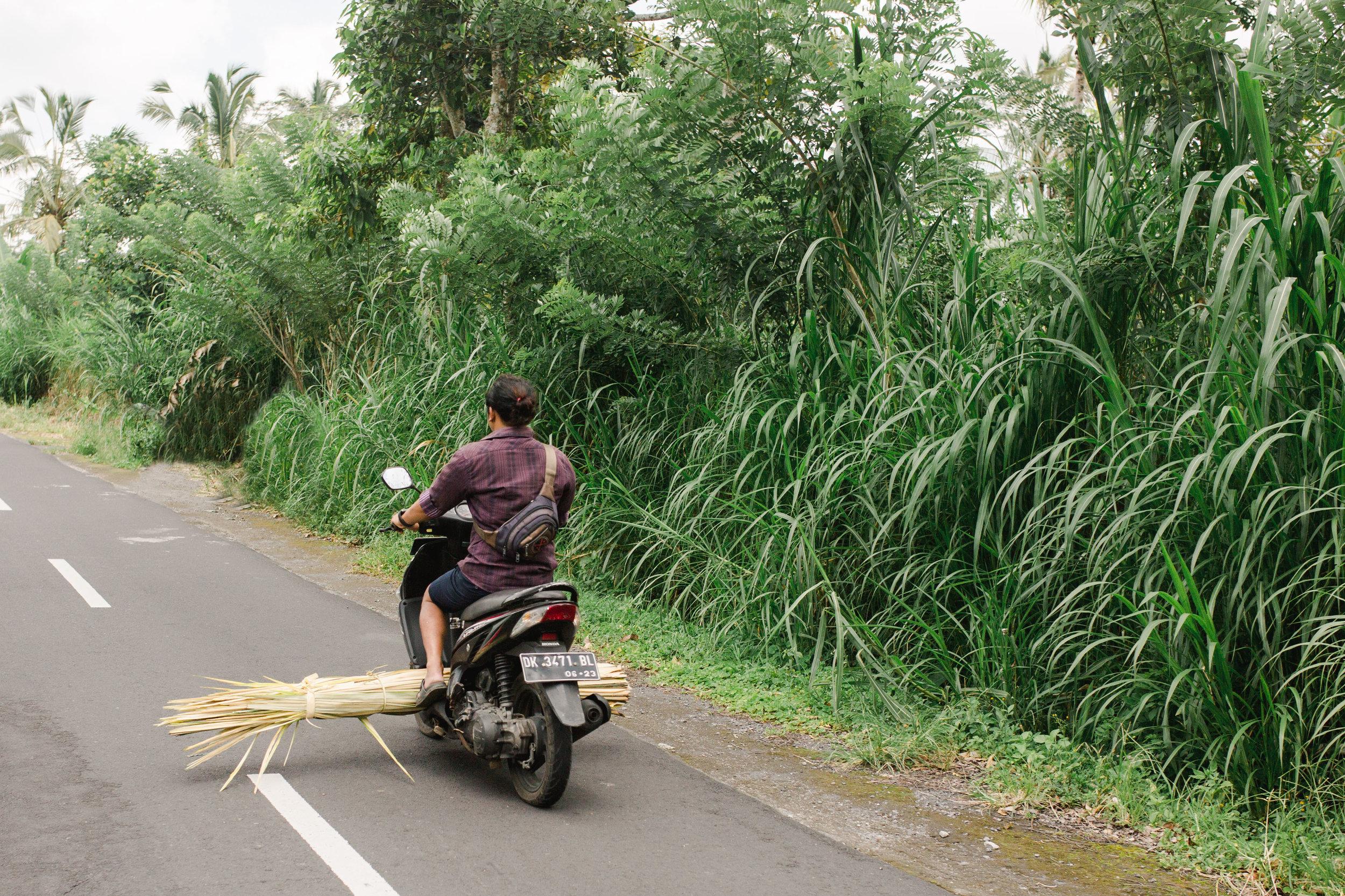 Maine Wedding Photographer Travels to Bali 30.jpg