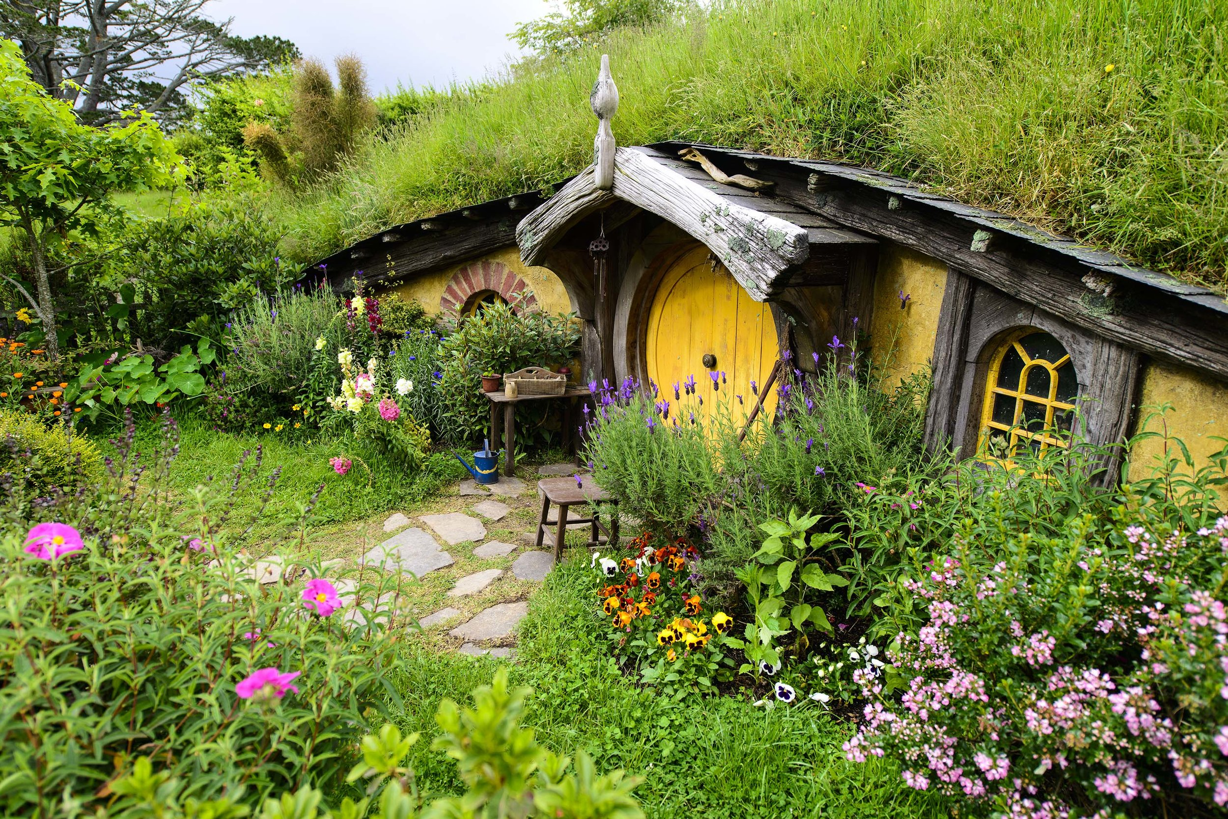 yellow hobbit hole 4 (1).jpg