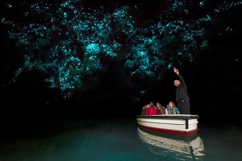 Waitomo Caves Tour - From $195 NZD per person