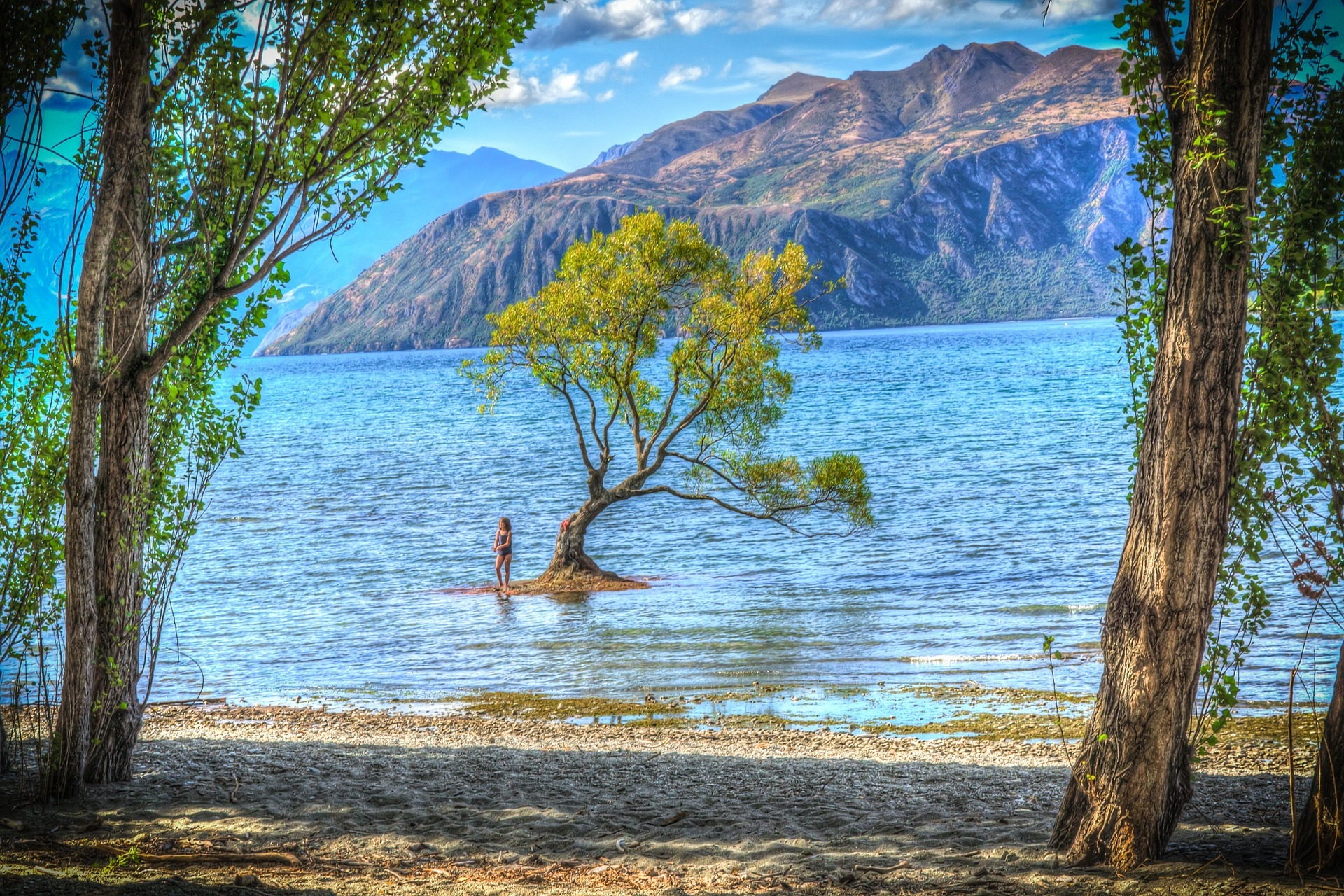 Experience Wanaka Tour - From $249 per person